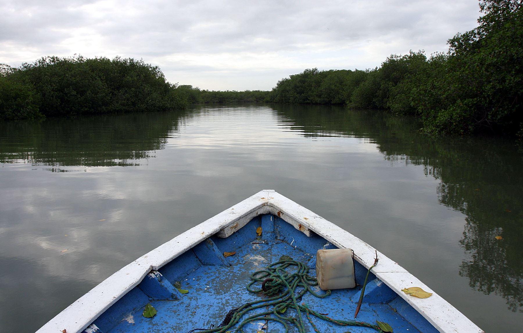 Los manglares es un importante atractivo turístico de Tumbes. ANDINA