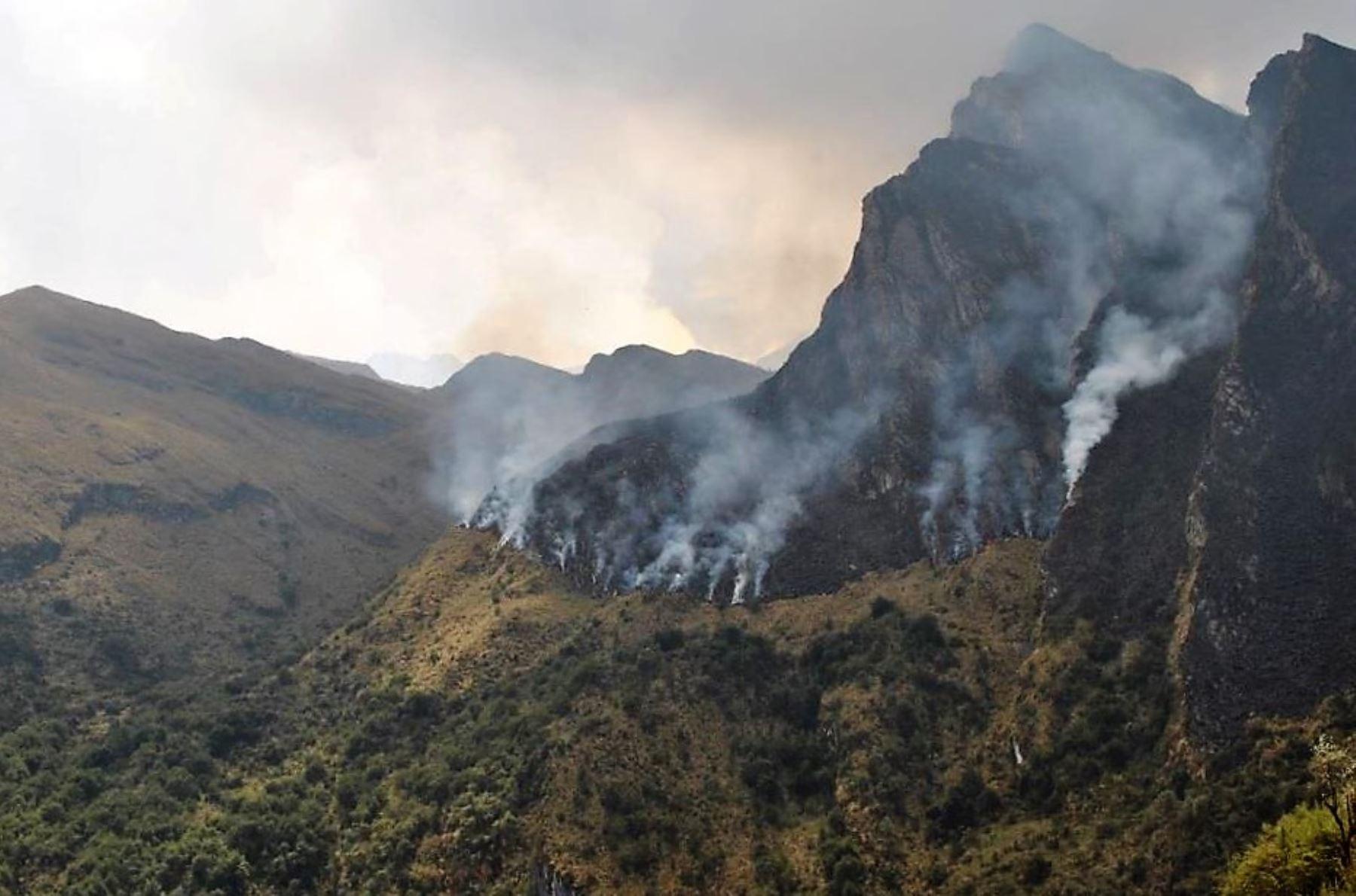 Brigadas controlan incendio forestal en el Santuario Nacional de Ampay, en Apurímac.