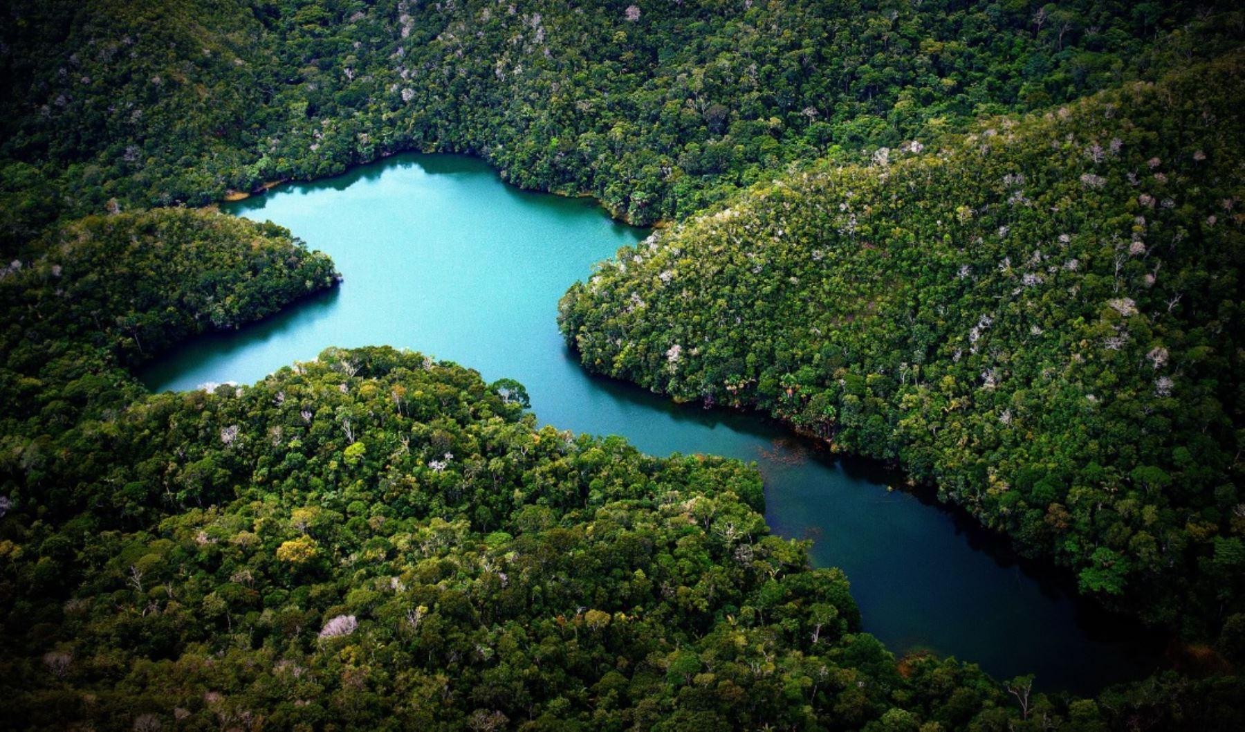 Cocha o laguna en el Parque Nacional Sierra del Divisor. Foto: Facebook/Parque Nacional Sierra del Divisor.