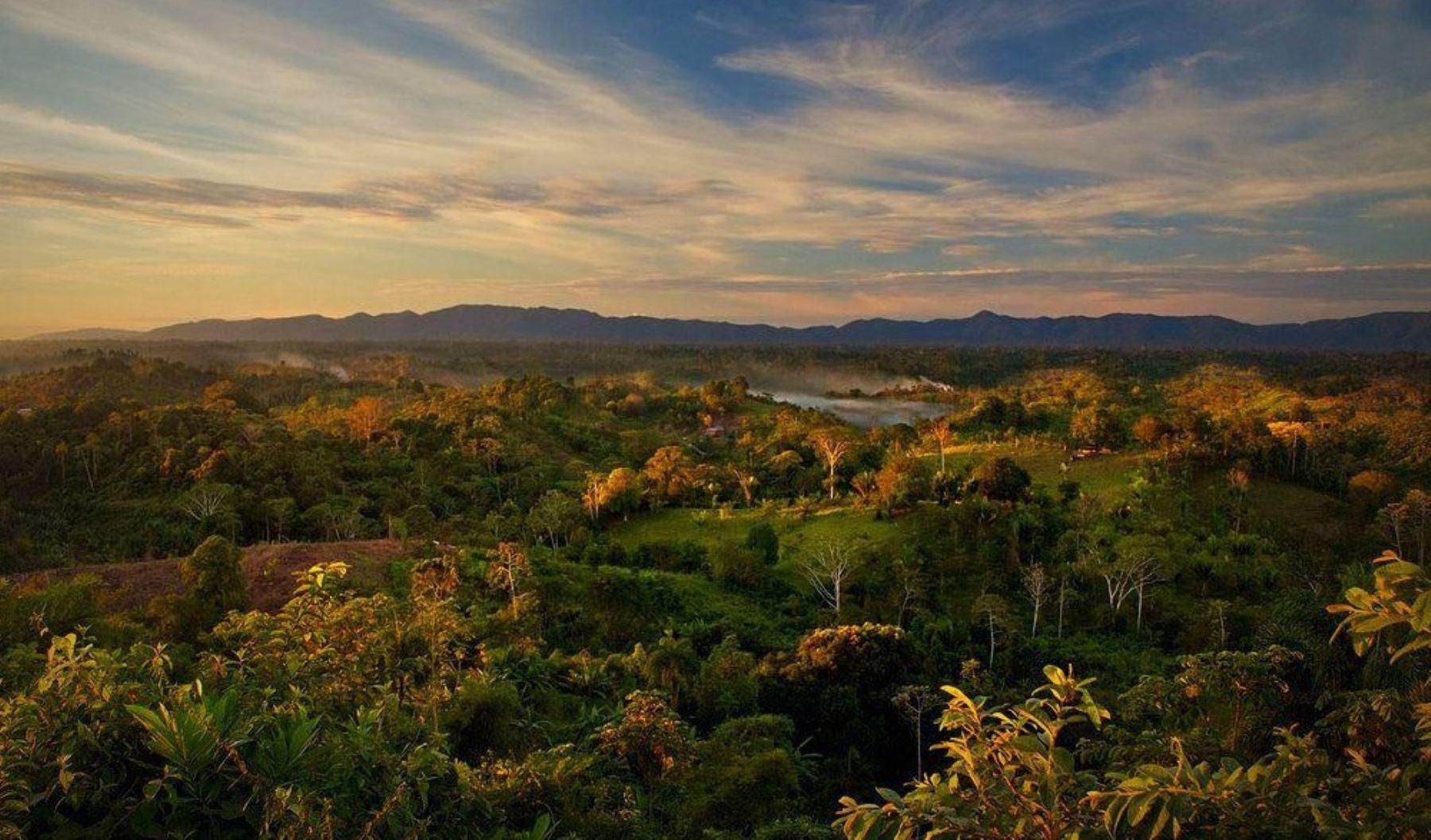 Parque Nacional Sierra del Divisor. Foto: Facebook/Parque Nacional Sierra del Divisor.