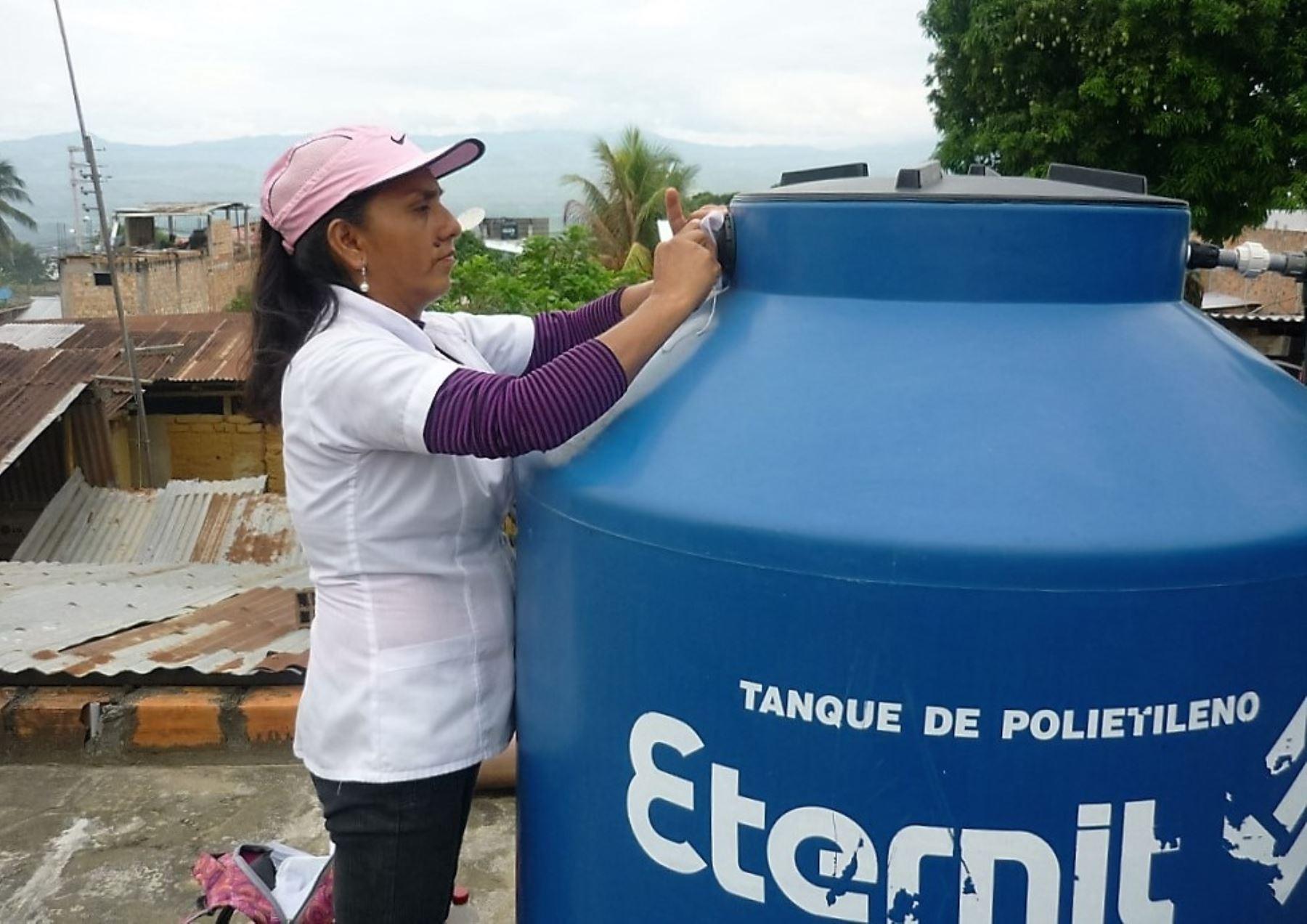 Acciones de prevención evitan que brote epidemia de dengue en San Martín. ANDINA