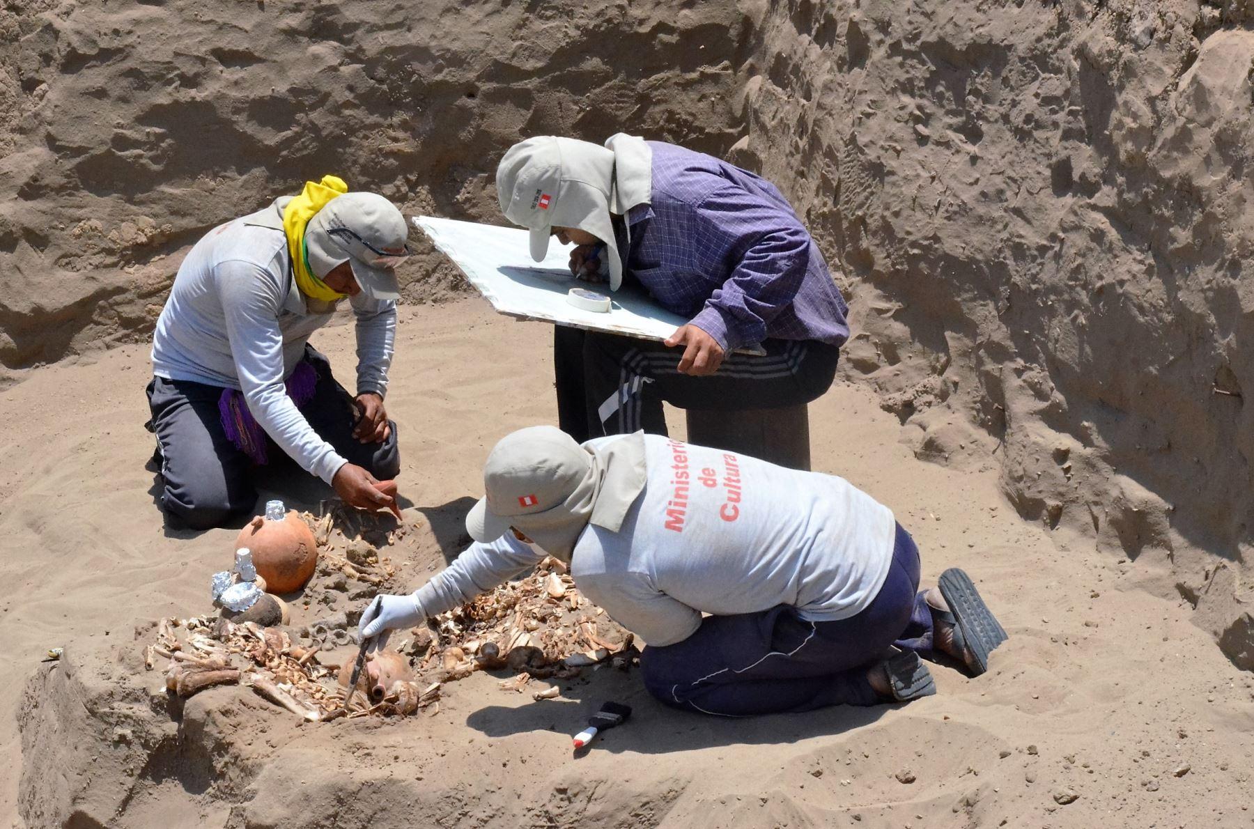 El Ministerio de Cultura, a través de la Unidad Ejecutora 005-Naylamp, invirtió más de 3 millones de soles, en un esfuerzo para conocer el proceso cultural que se desarrolló en Lambayeque, específicamente en los complejos arqueológicos de Túcume, Chotuna-Chornancap, Saltur y el Valle de Zaña./ANDINA