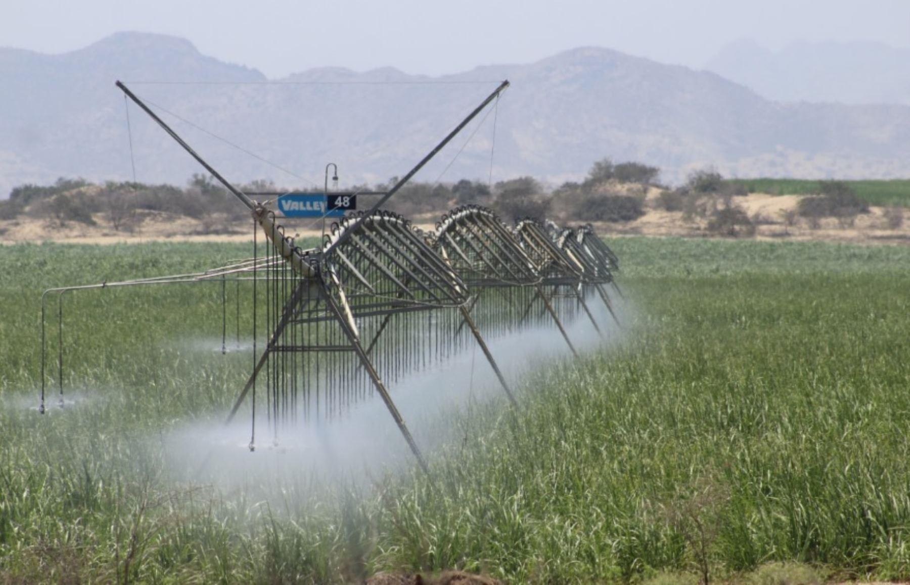Plantas agroindustriales contribuyen en dinamizar sector metalmecánico de Lambayeque