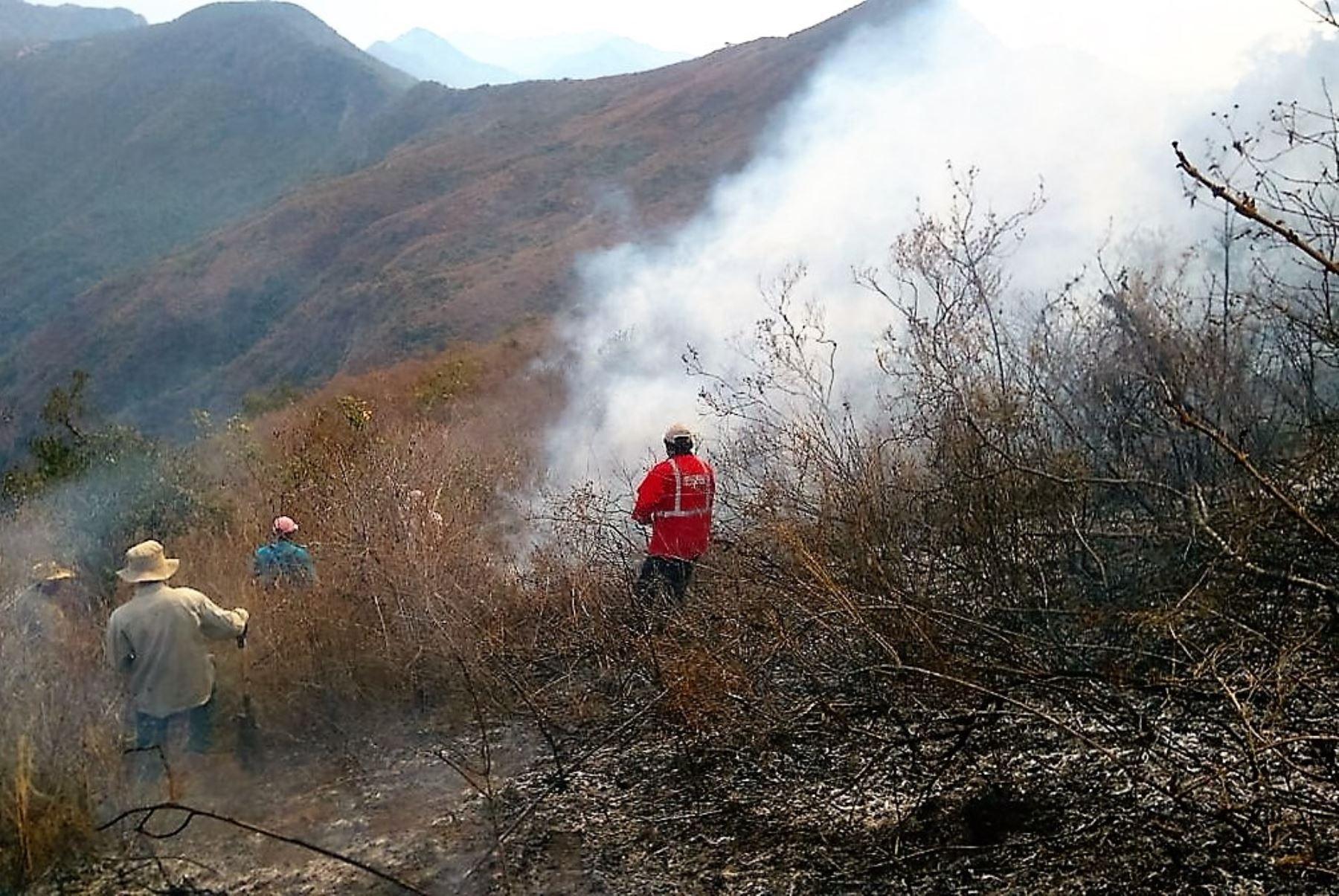 Incendios forestales amenazan biodiversidad en zona de Chaparrí . INTERNET/Medios