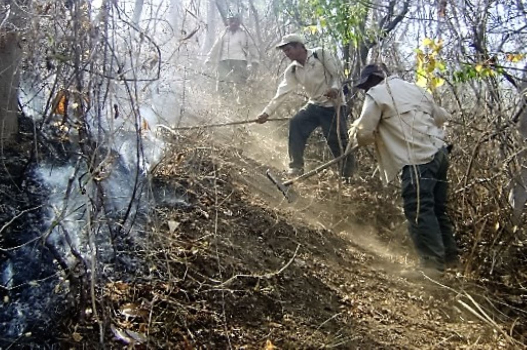 El incendio forestal que se produjo en la víspera en la localidad de Qatun Pata, distrito de Surcubamba, provincia de Tayacaja, región Huancavelica, fue controlado esta mañana por los pobladores y propietarios de los terrenos de la zona, informó el Instituto Nacional de Defensa Civil (Indeci). ANDINA/Difusión