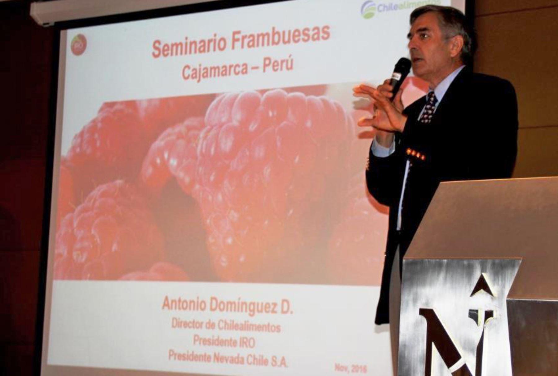 """Se busca convertir a los """"Frutos del Bosque"""", en especial a la frambuesa, en el """"Cultivo Emblemático de la región Cajamarquina""""."""