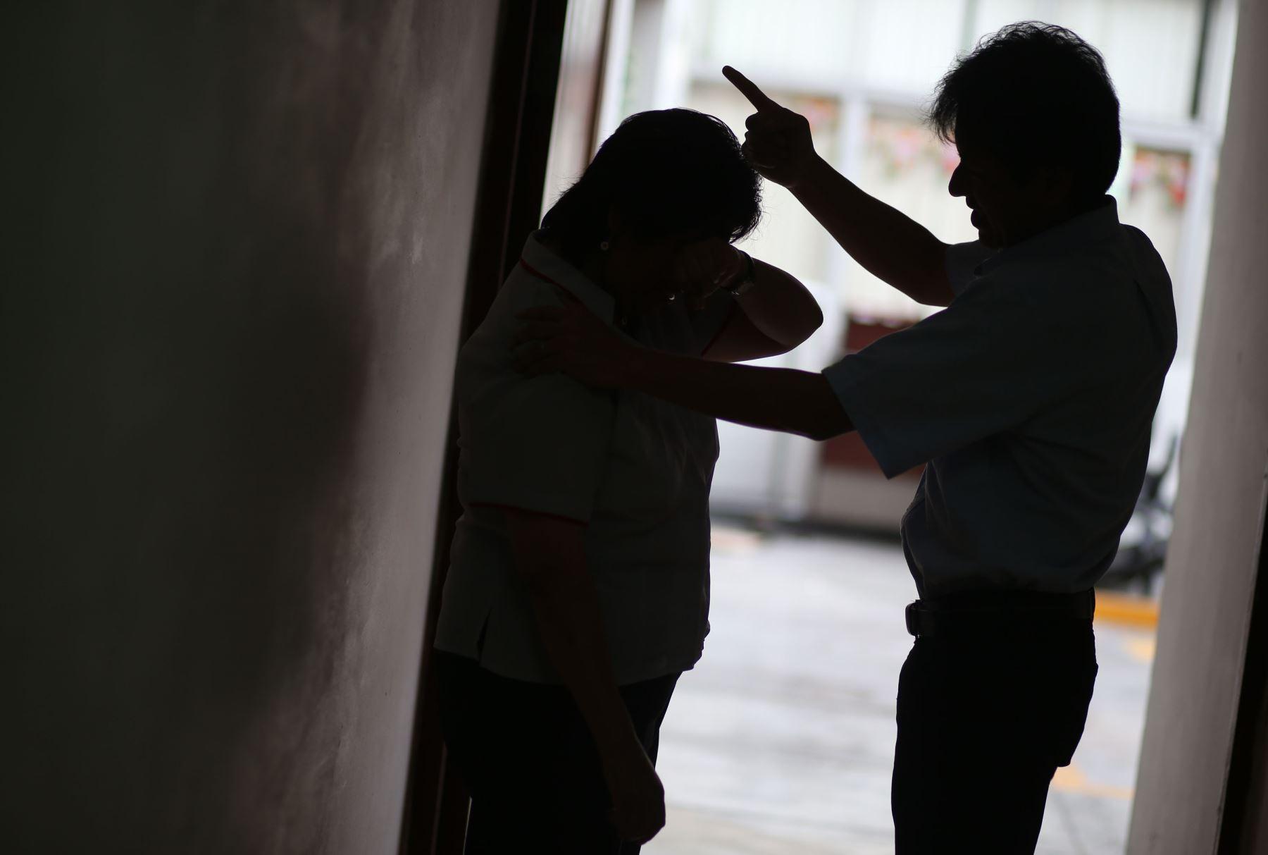 El sistema judicial está empeñado en atender de manera célere las denuncias por violencia familiar y sexual. Foto: ANDINA/Vidal Tarqui