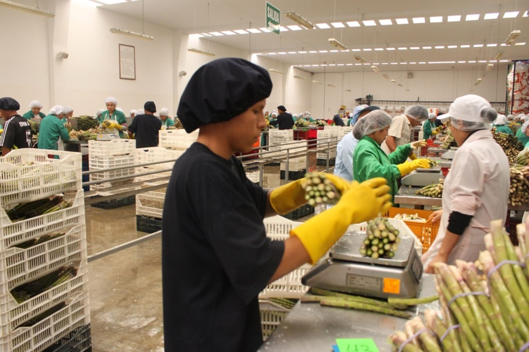 Exportaciones. Foto: ANDINA/Difusión