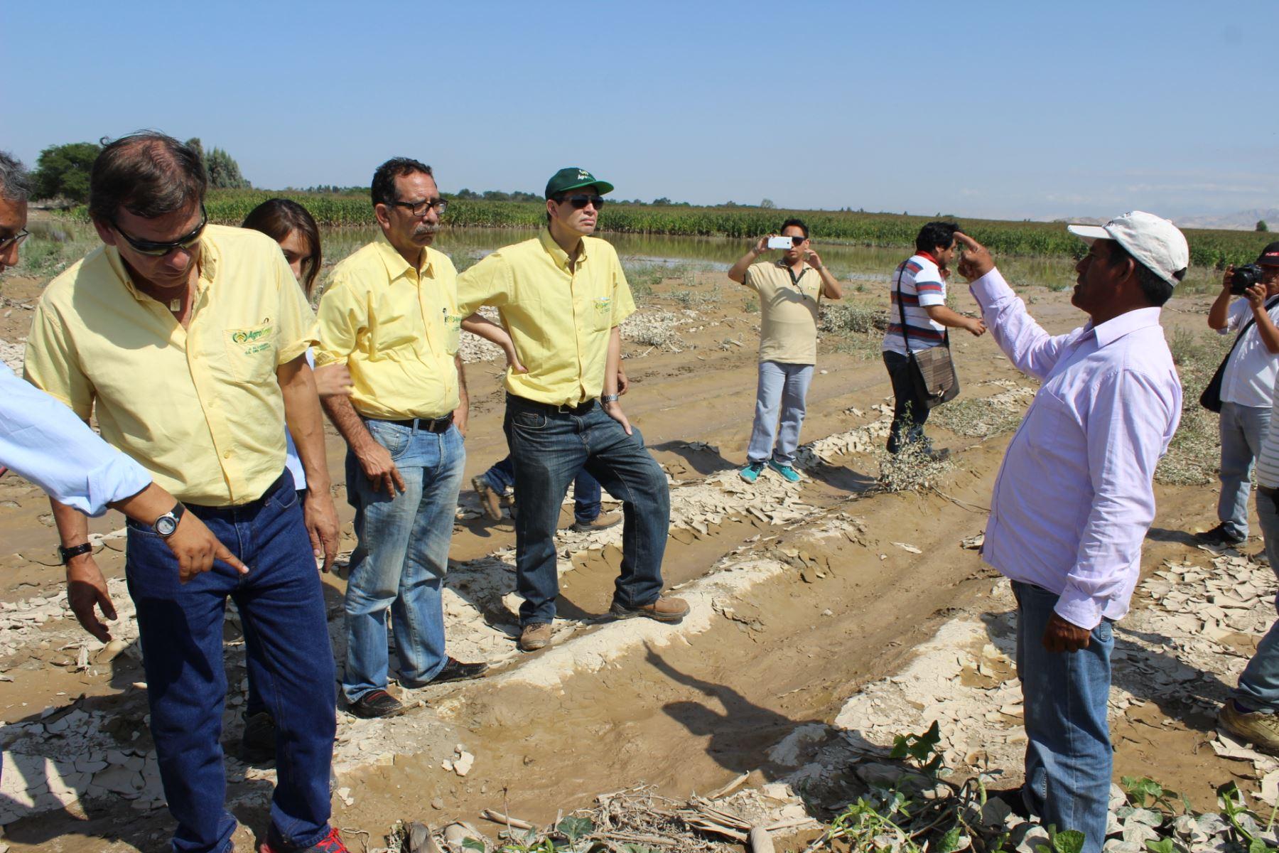 Agrobanco evalúa situación de agricultores afectados por lluvias y huaicos