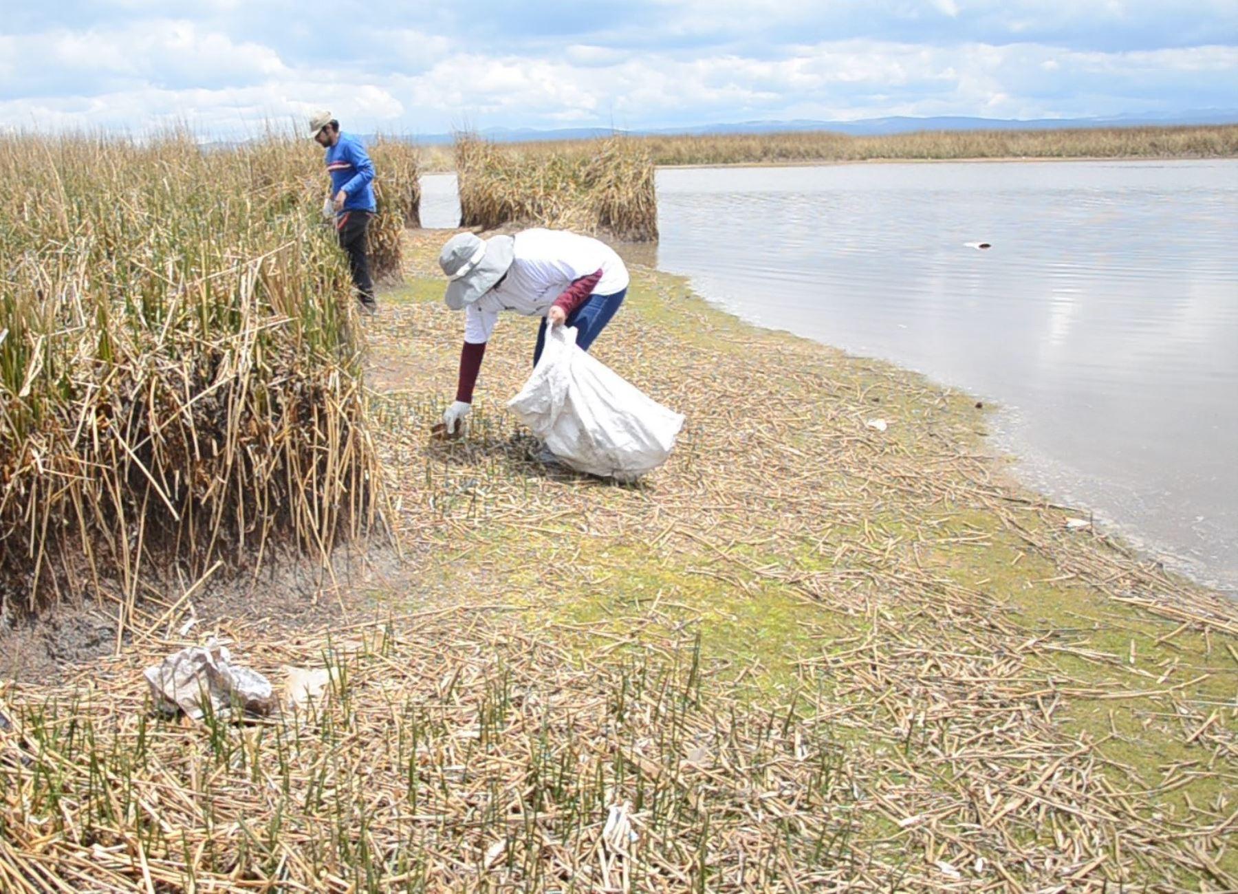 Brigadas ambientales realizan la limpieza del lago Chinchaycocha, en Junín. ANDINA