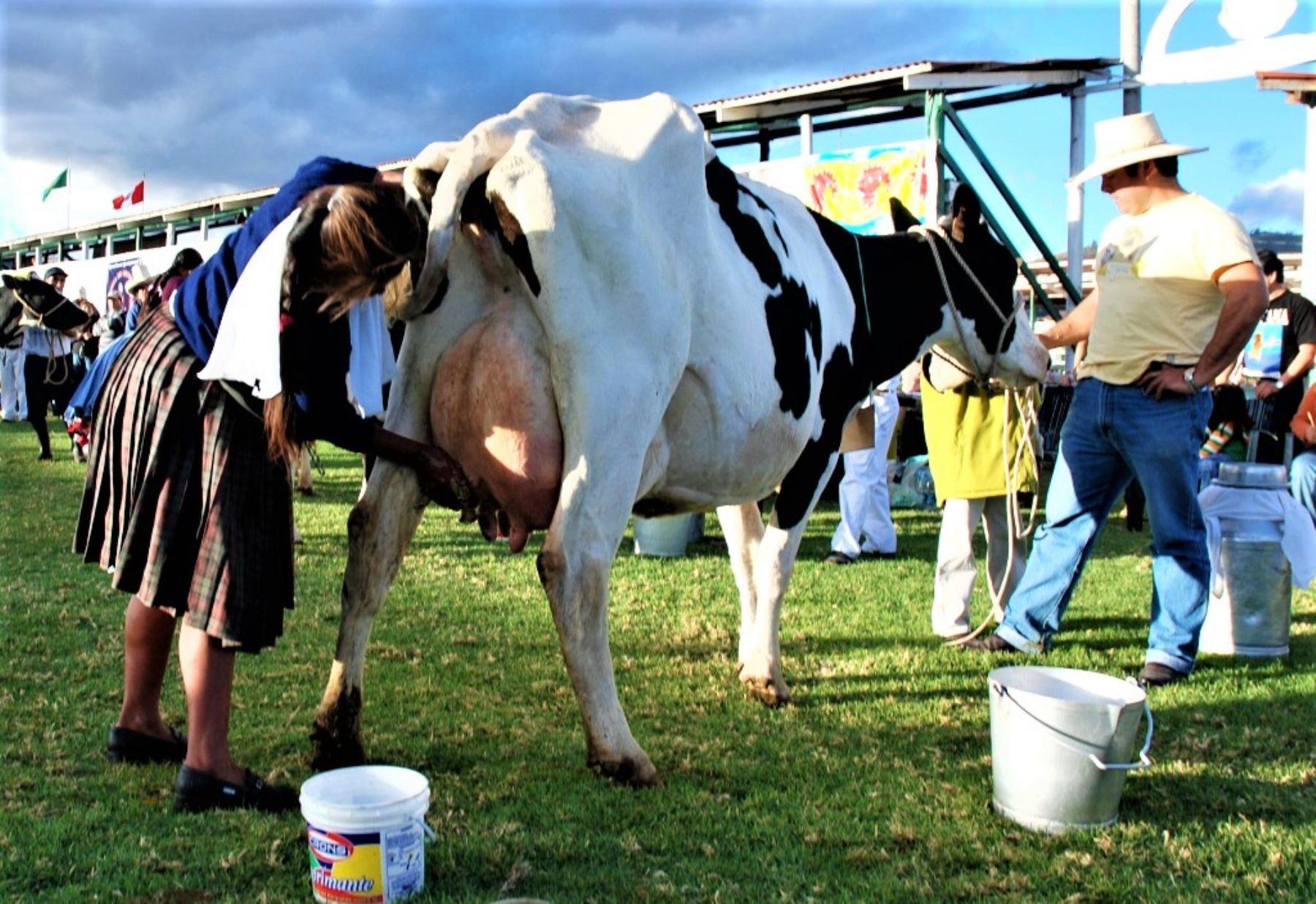 Los productos lácteos necesitan estar bajo un proceso de enfriamiento durante su transporte, el cual muchos productores no poseen.