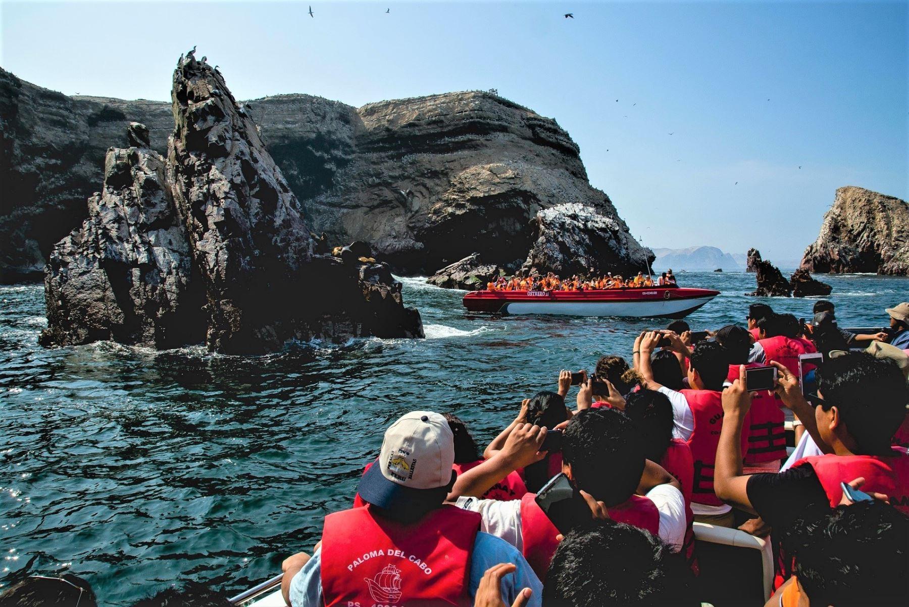 En el Perú existen 11 áreas naturales protegidas que se encuentran en la zona costera, de las cuales tres albergan ecosistemas marinos.