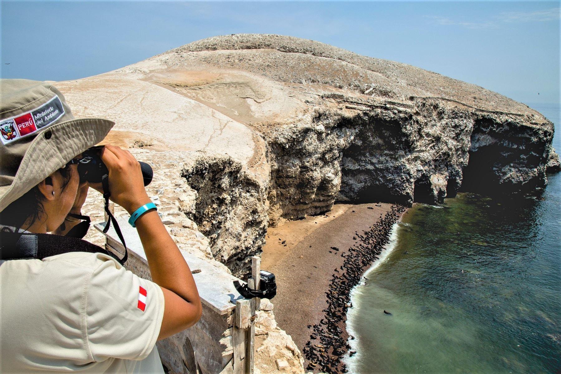 El escenario será la Reserva Nacional de Paracas en la región Ica.