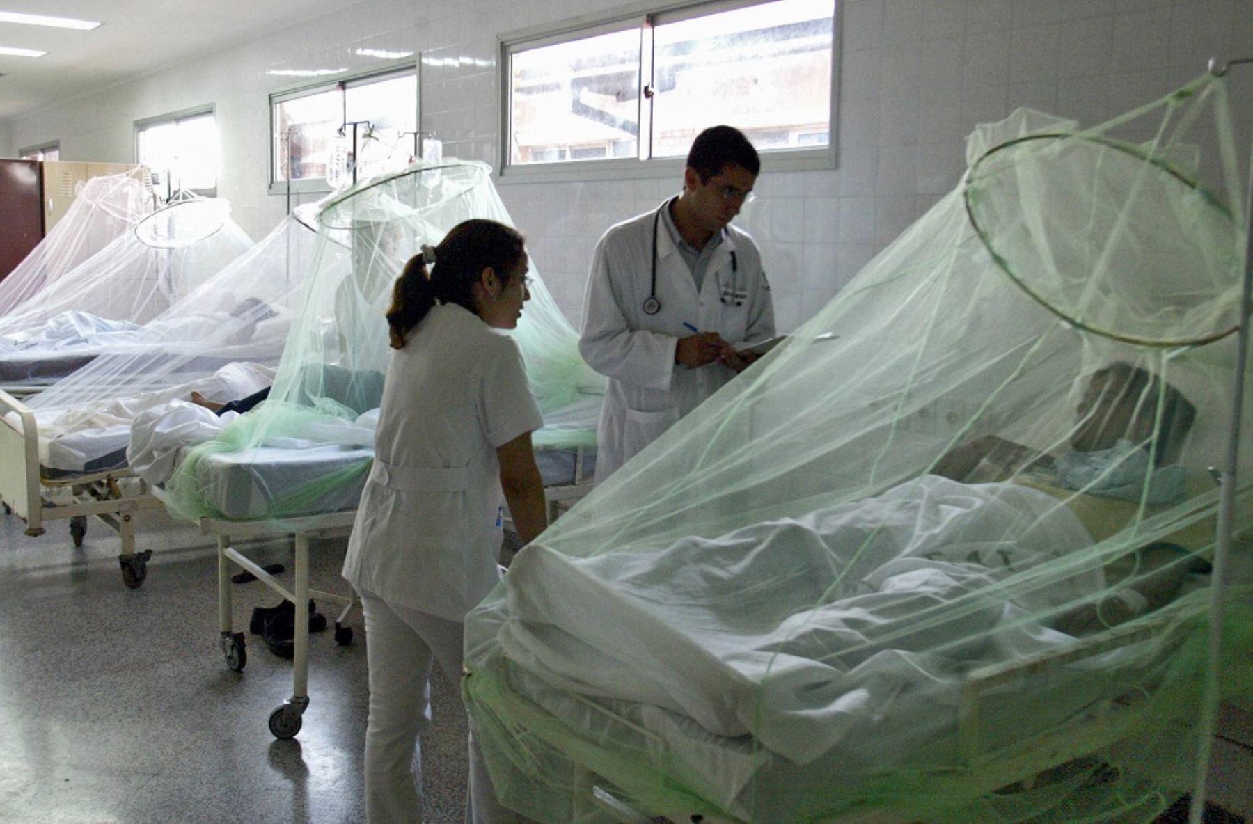 A 76 se elevó el número de casos de personas afectadas con el dengue en Lambayeque, por lo que la Gerencia Regional de Salud intensificó las intervenciones domiciliarias para controlar las larvas del Aedes aegypti, zancudo transmisor de dicha enfermedad, además del zika y chikungunya en esta zona del país. ANDINA/Difusión