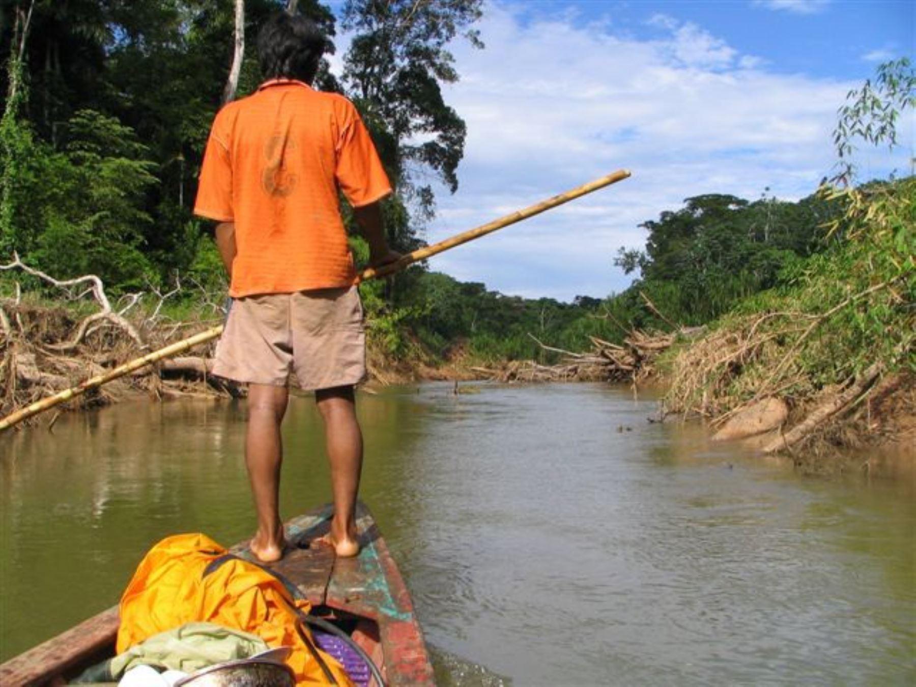 Parque Nacional del Manu, en la región Madre de Dios. ANDINA/Difusión