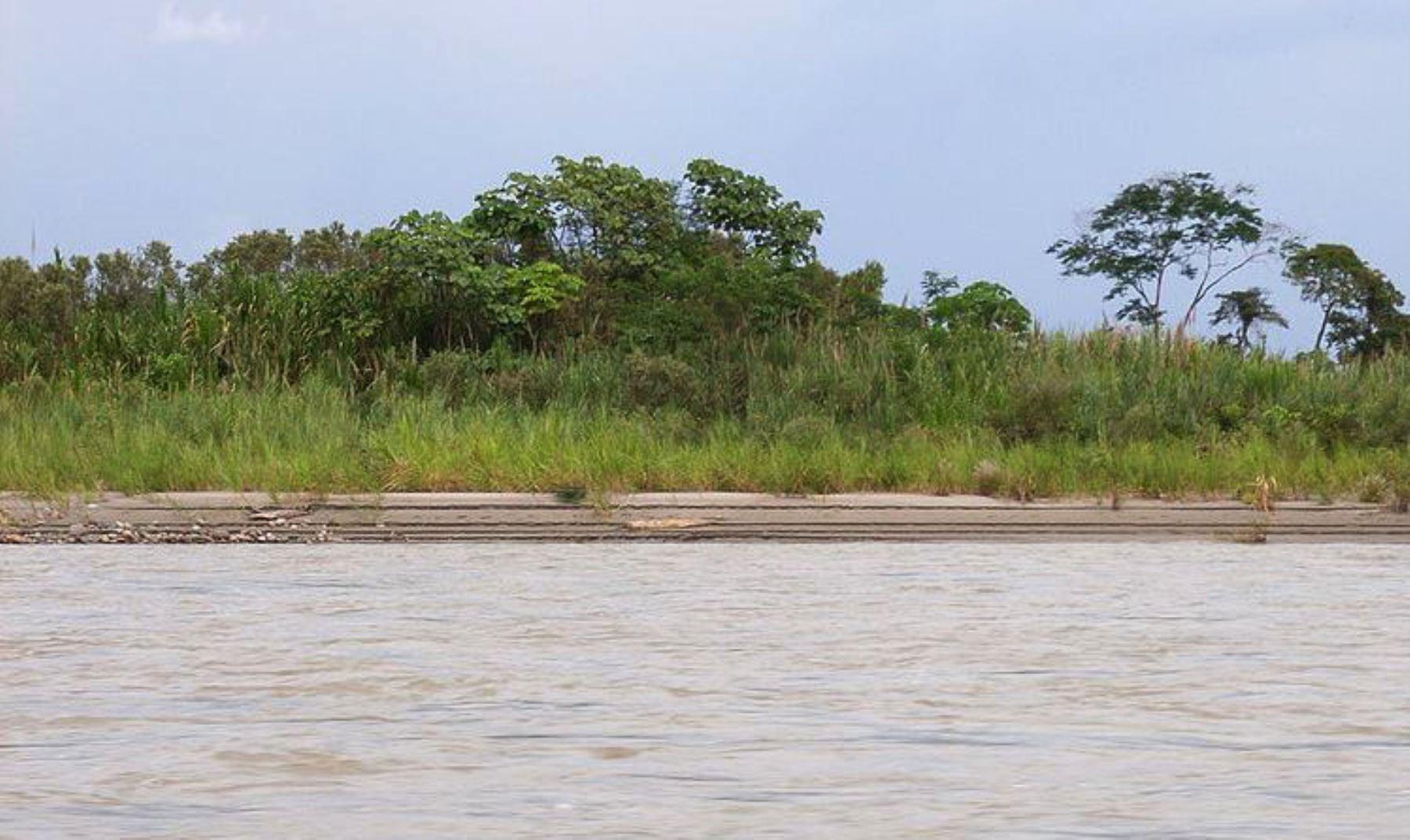 En las últimas horas, el nivel de agua del río Napo, en la estación Bellavista Mazán, en la región Loreto, presentó un ligero descenso y alcanzó esta mañana 90.94 metros sobre el nivel del mar, tres centímetros menos que la reportada en la víspera, pero se mantiene en alerta roja, informó el Senamhi.ANDINA/archivo