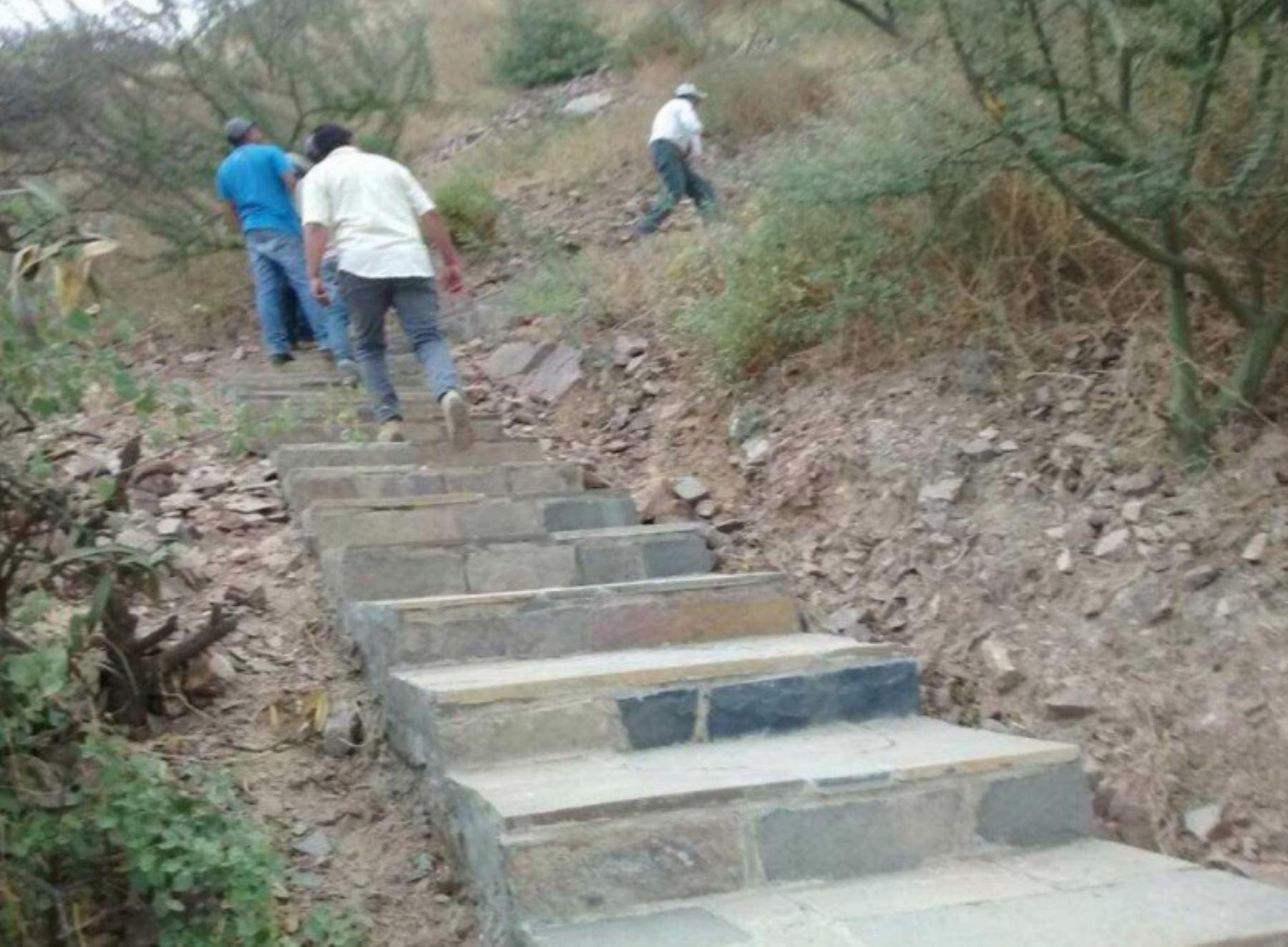 Culminan trabajos de señalización en Santuario Histórico Bosque de Pómac ANDINA/Difusión