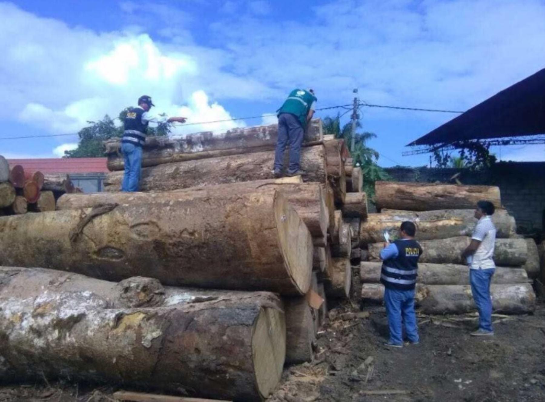 Lucha contra la tala ilegal