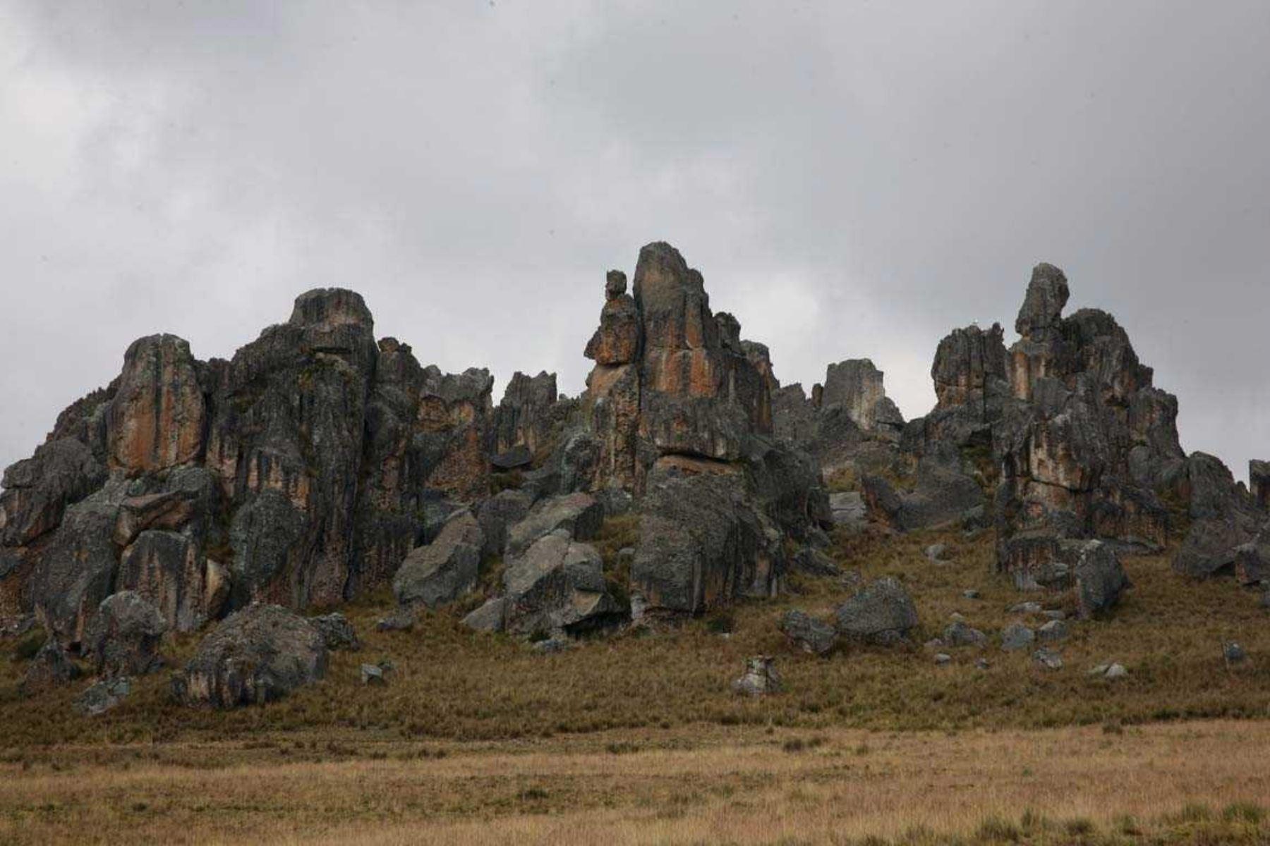El Santuario Nacional de Huayllay fue creado oficialmente el 7 de agosto de 1974 y tiene una extensión de 6,815 hectáreas. ANDINA/Difusión