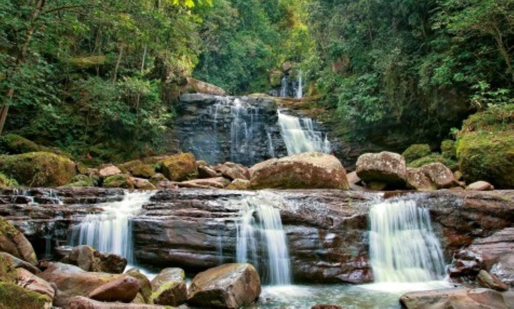 Cascadas de Paccha, ubicadas a las afueras de la ciudad de Moyobamba, región San Martín. Foto: Dirección Regional de Turismo de San Martín.