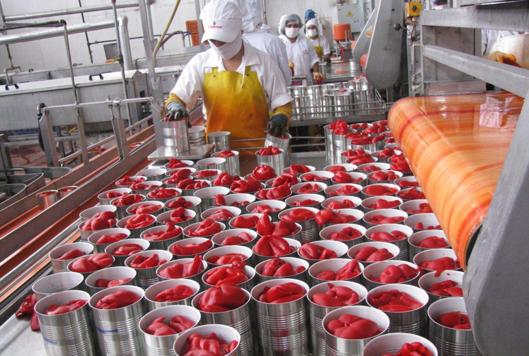Procesamiento de pimientos para la exportación. Foto: ANDINA/Difusión