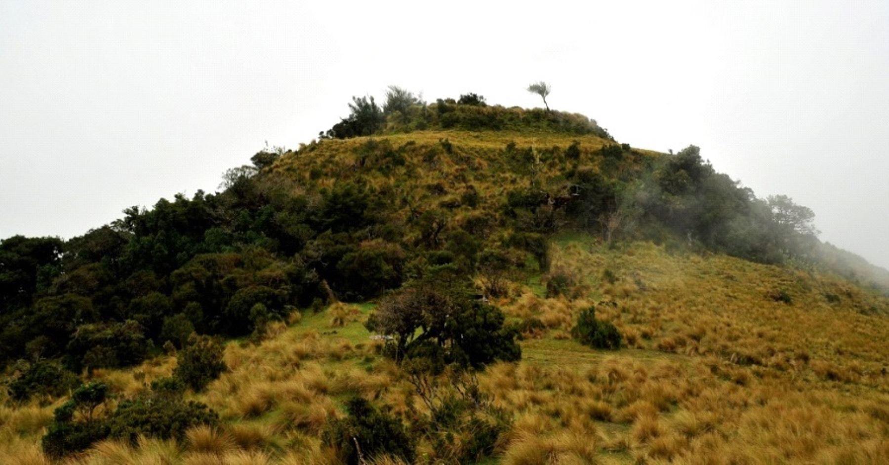 El Refugio de Vida Silvestre Bosques Nublados de Udima se encuentra en la región Amazonas.