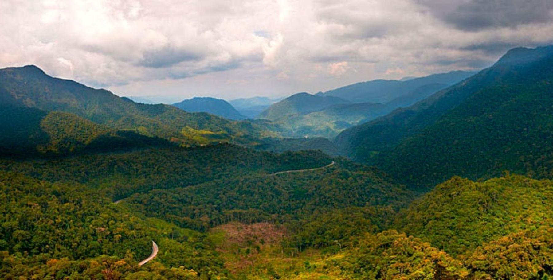 El Bosque de Protección de Pagaibamba (BPP) está ubicado en el distrito de Querocoto en la provincia de Chota, departamento de Cajamarca; y tiene una extensión de 2,078.38 hectáreas.