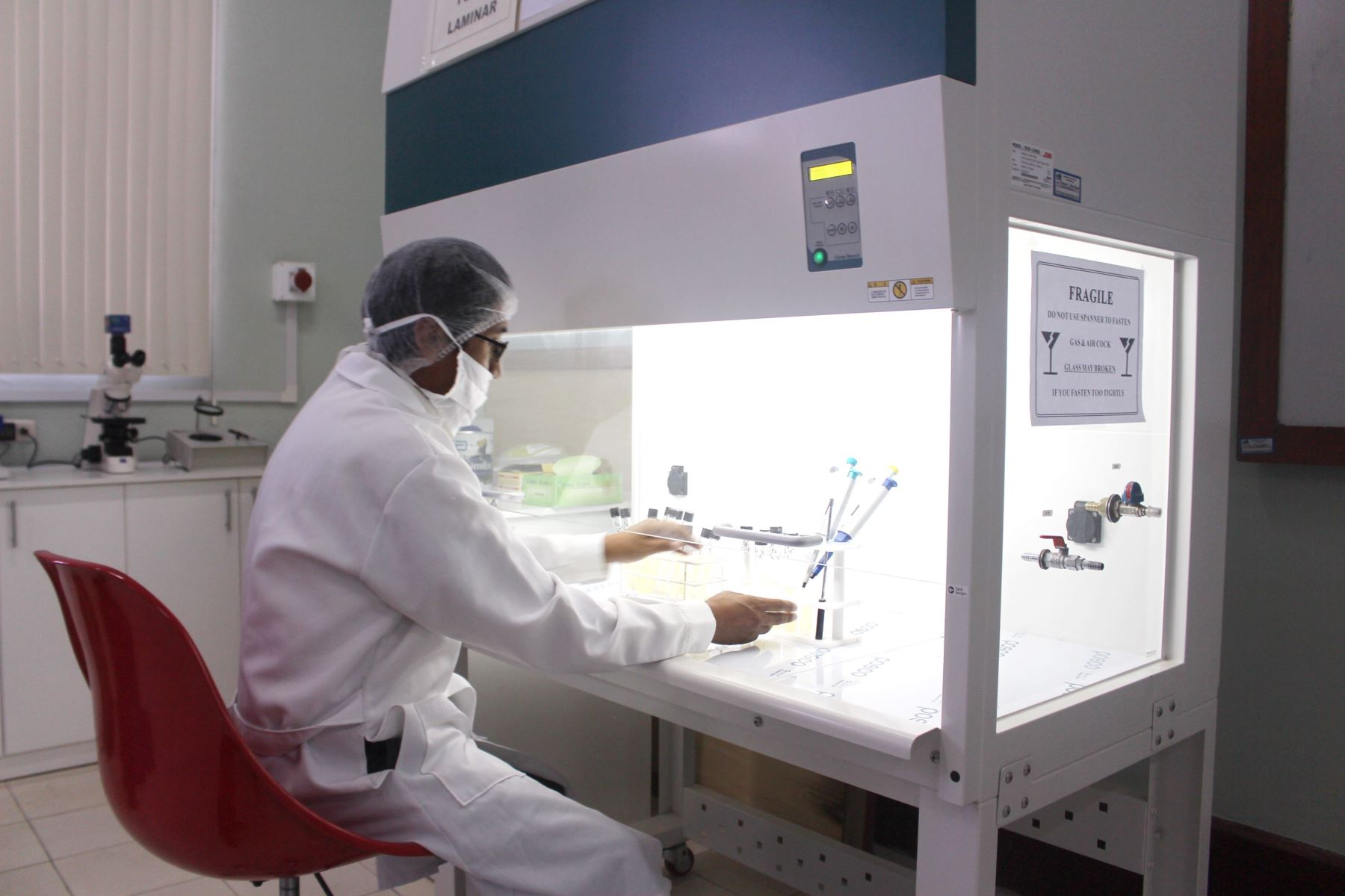 Universidad de Arequipa promueve inversión en investigación por impuestos. ANDINA/Archivo