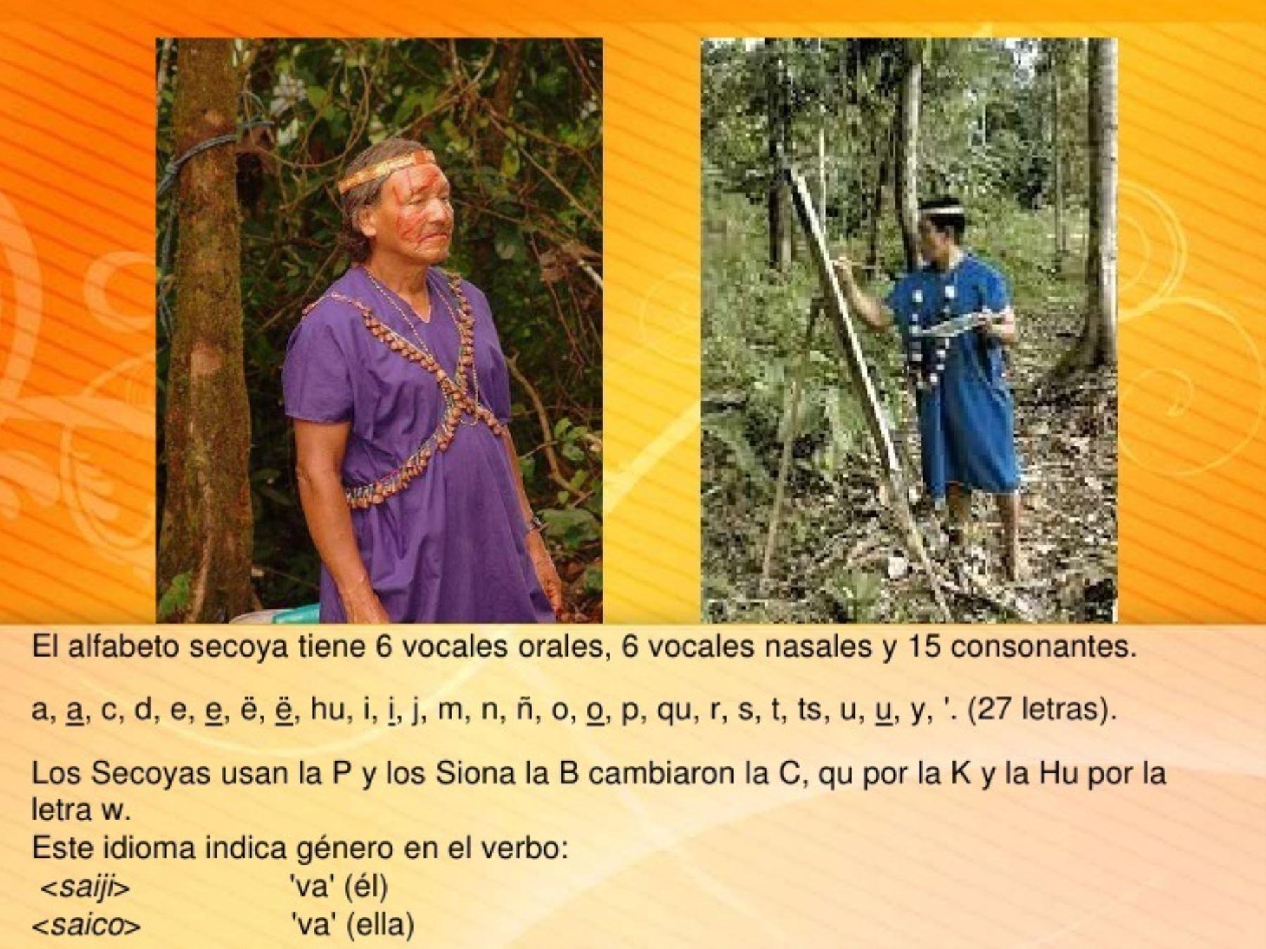 Alfabeto de la lengua Secoya