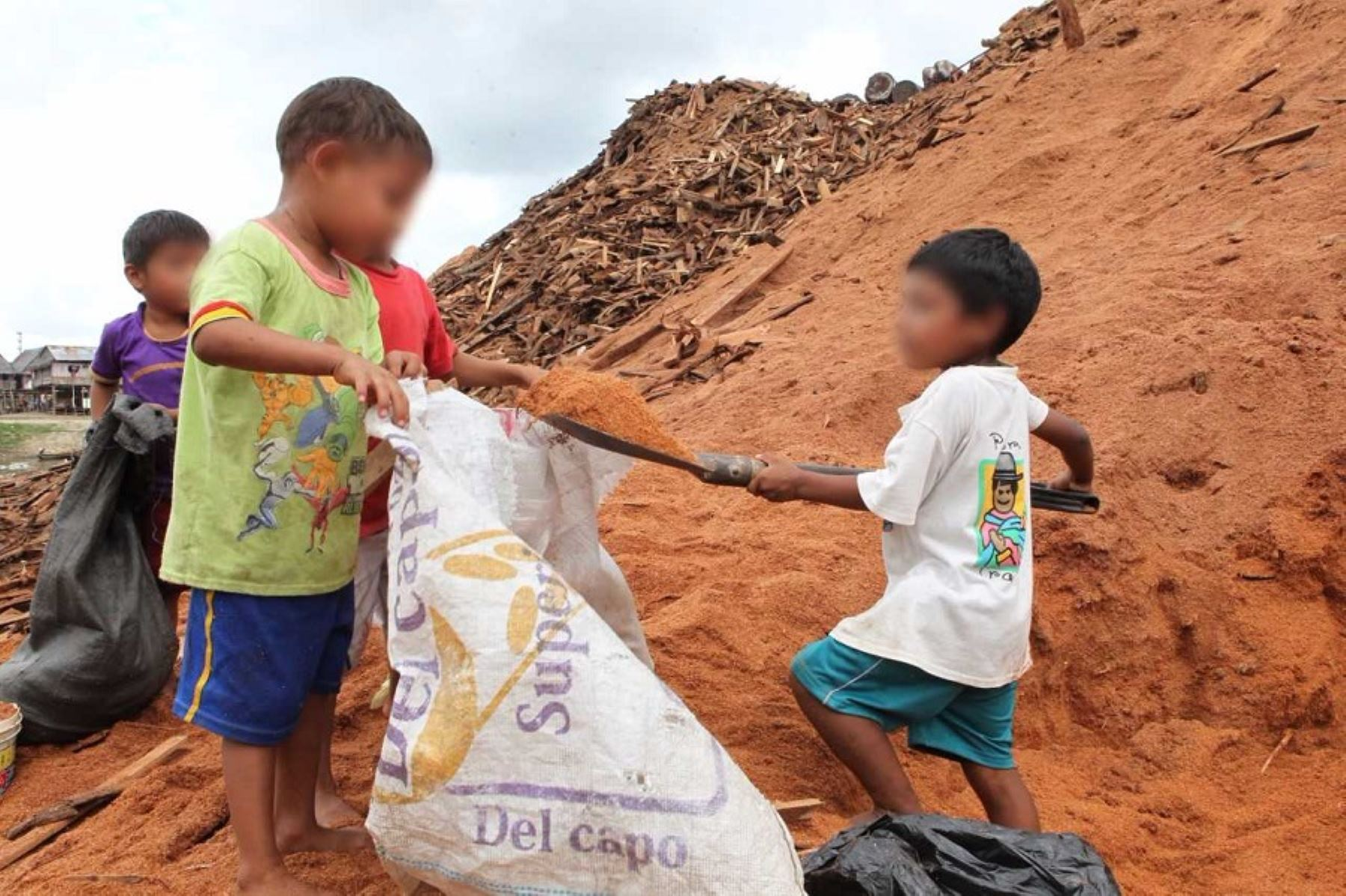 El Ministerio de Trabajo y Promoción del Empleo enfocará sus acciones para prevenir y erradicar el trabajo infantil y adolescente peligroso, en especial en zonas rurales, manifestó el viceministro de Trabajo, Augusto Eguiguren