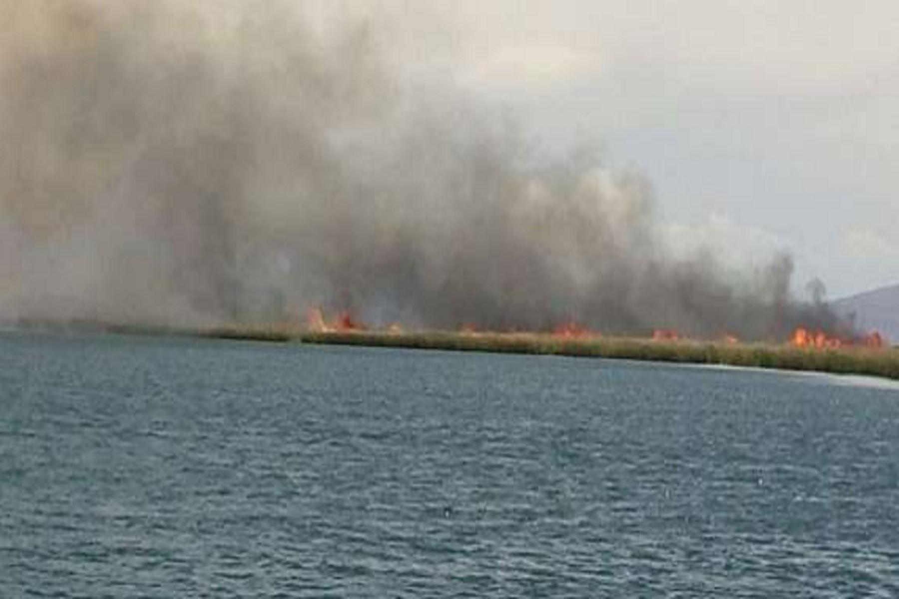 El fuego logró ser sofocado aproximadamente a las 18:00 horas de ayer.