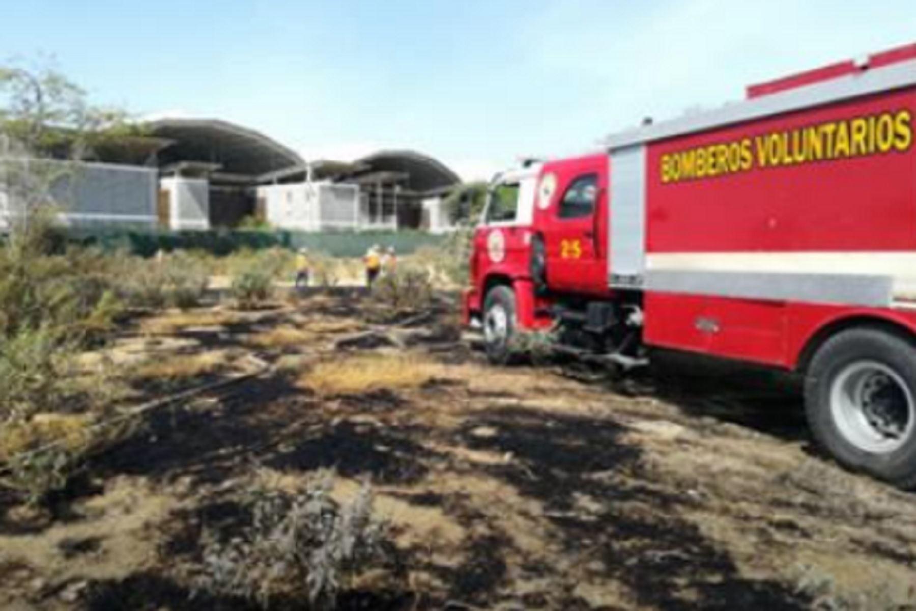 Sofocó el fuego la Compañía de Bomberos de Piura N°25.