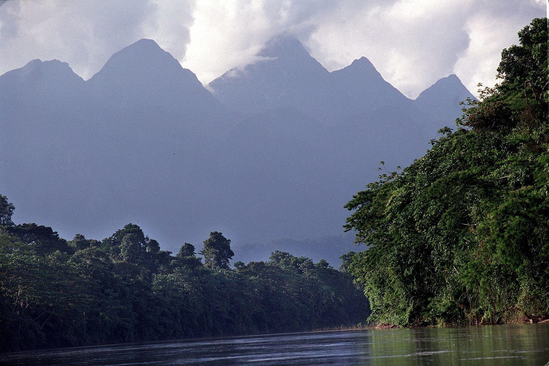 Parque Nacional Cordillera Azul ubicado en la región San Martín. ANDINA