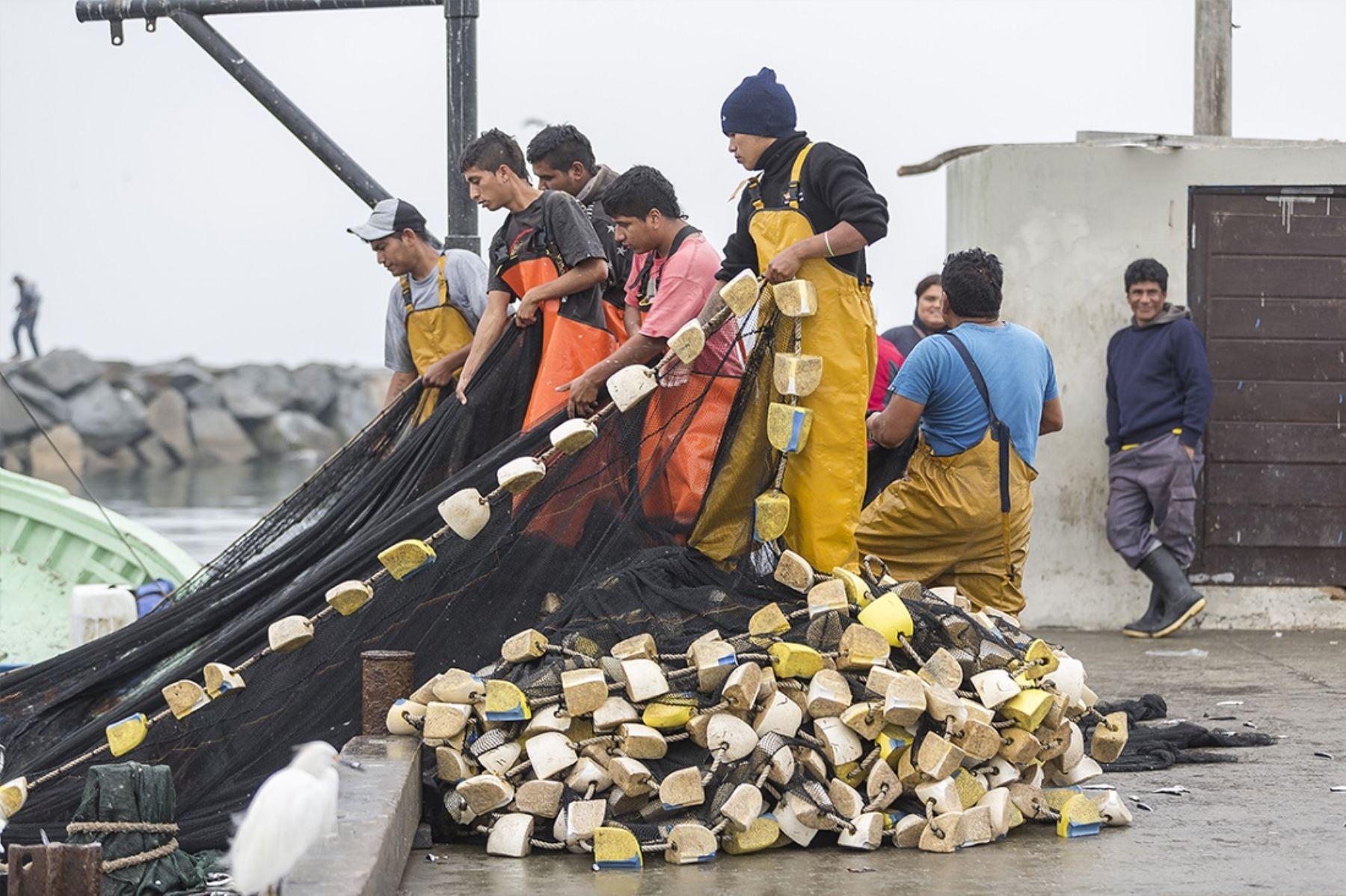 Petroperú, en el marco de su Política de Responsabilidad Social, promovió la presentación de cuatro subproyectos a favor del Gremio de Pescadores Artesanales de Talara, en la región de Piura, que contarán con una inversión social de hasta S/380,790,00 por un periodo de ejecución de seis meses.ANDINA/Difusión