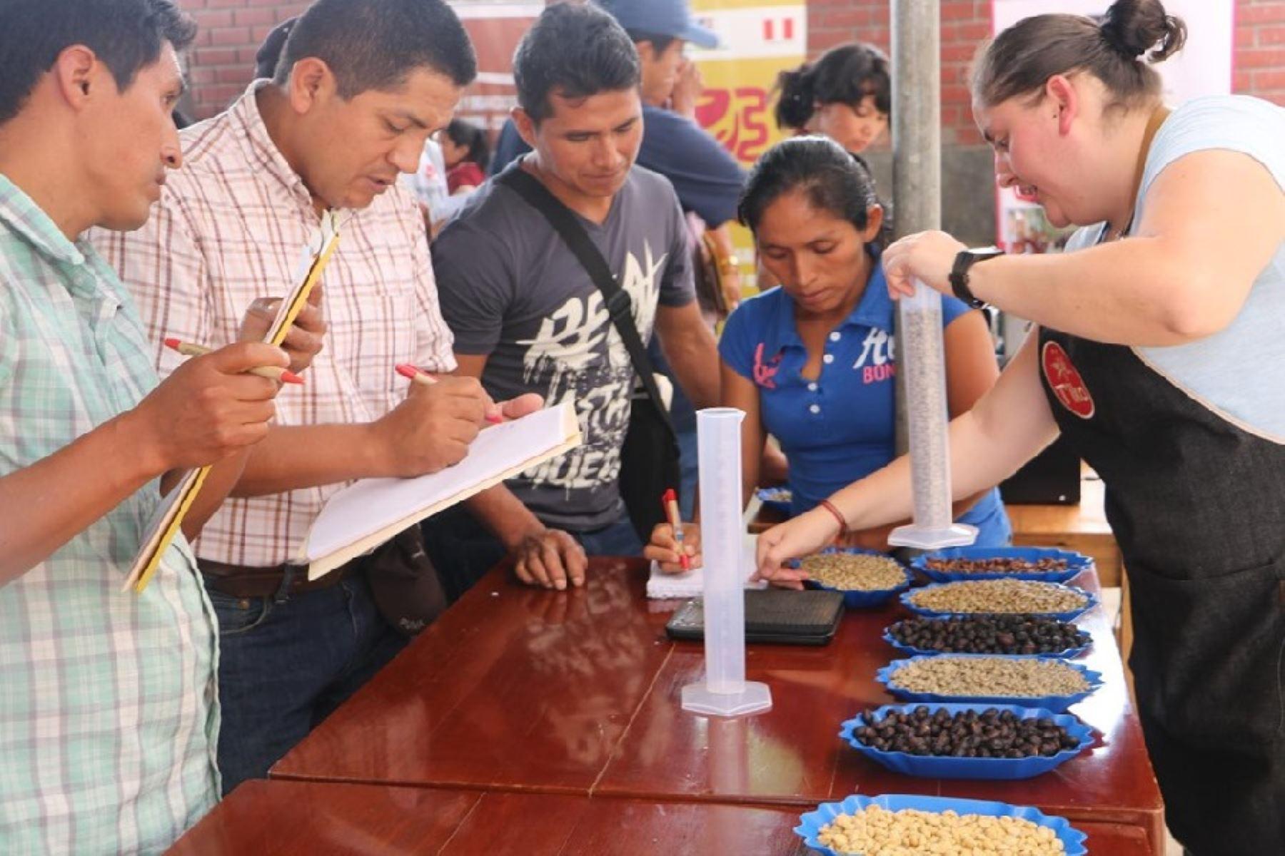 Capacitan en tostado de cafés especiales a productores de Satipo, en Junín. ANDINA/Difusión