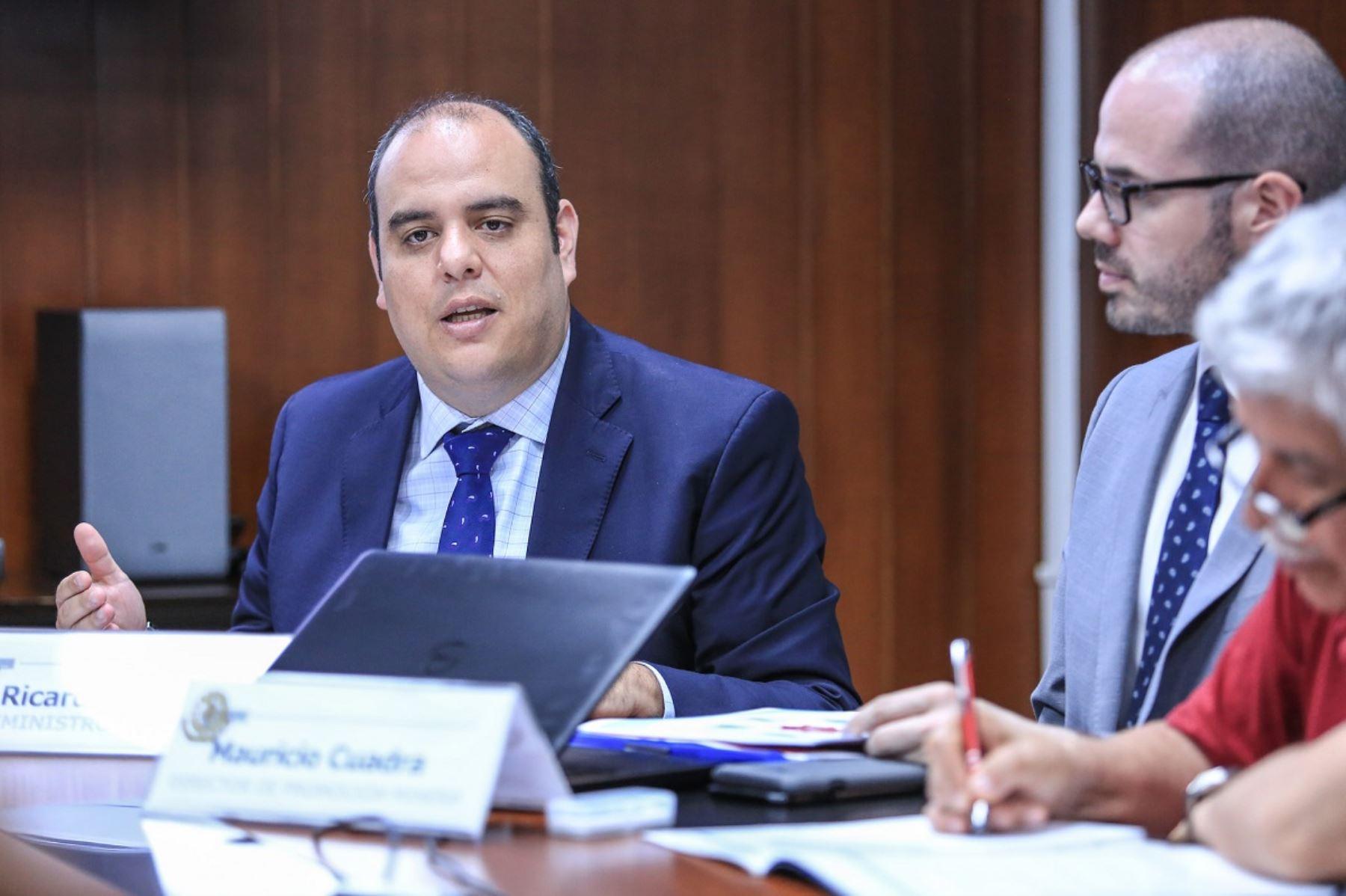Viceministro de Minas, Ricardo Labó. Foto: Cortesía MEM.