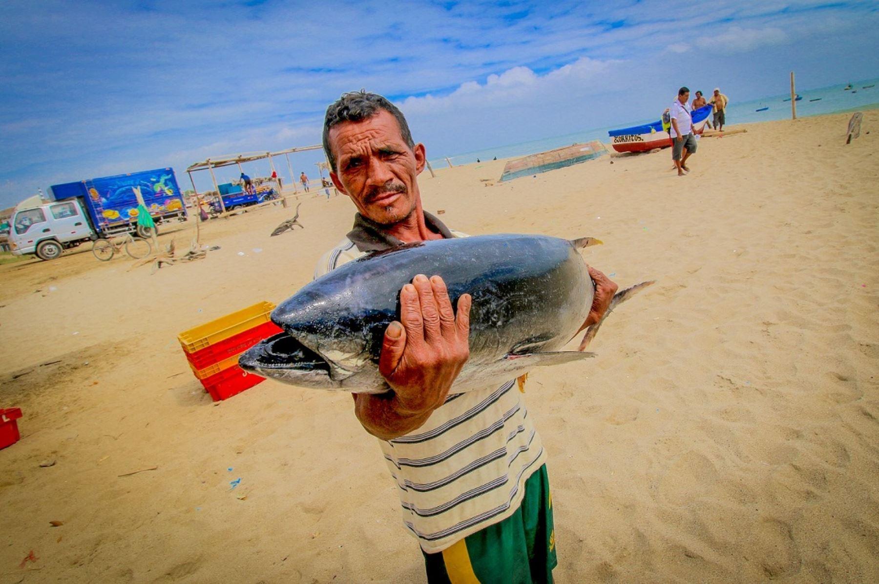 Pescador artesanal