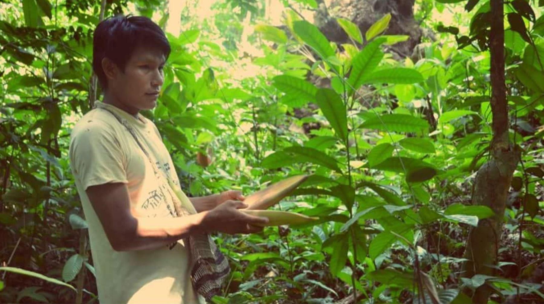 Indecopi entrega 700 registros de conocimientos colectivos a comunidades indígenas del Perú.