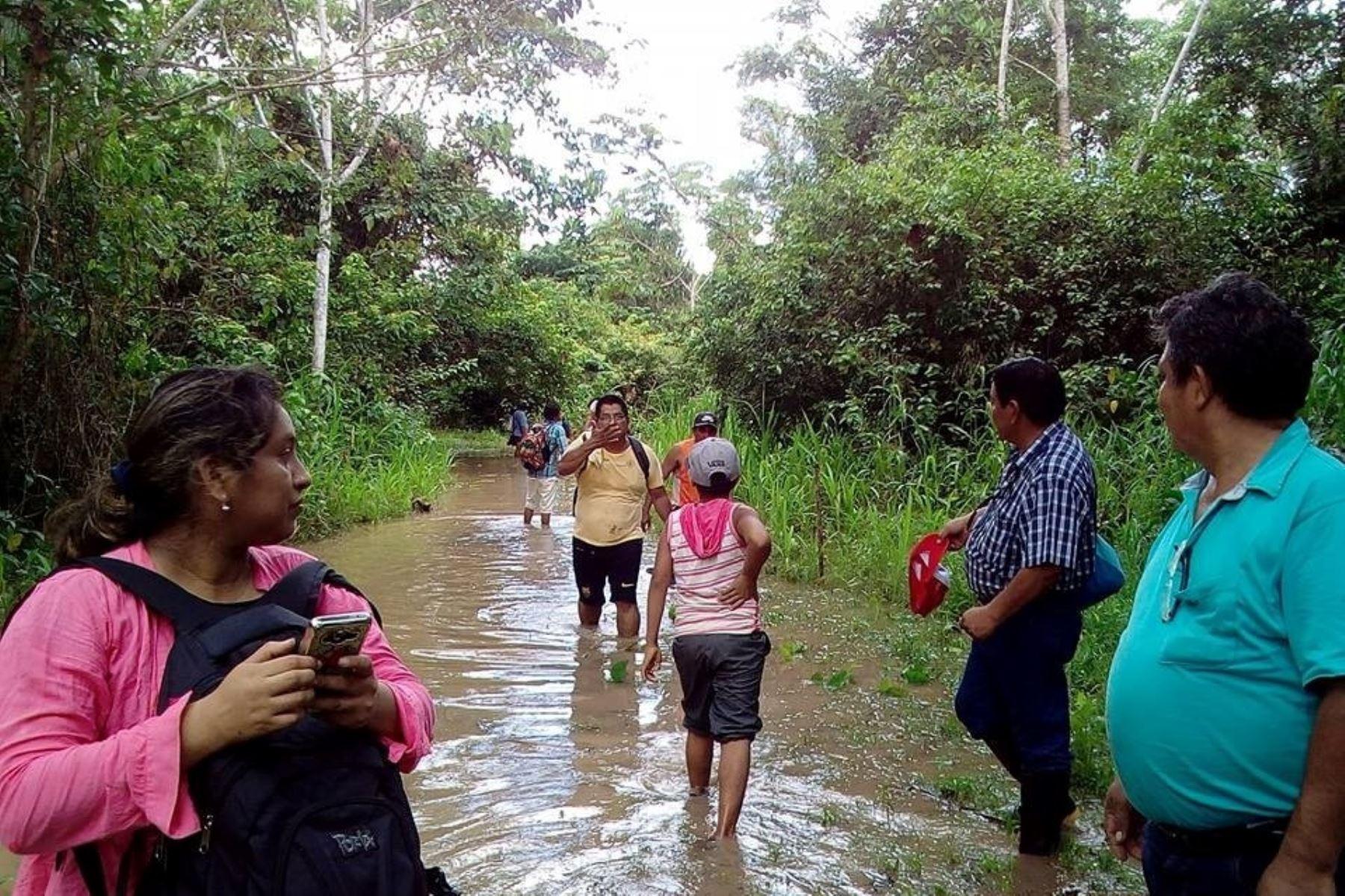 Más de 50 viviendas inundadas por lluvias intensas en provincia de Picota, San Martín. ANDINA