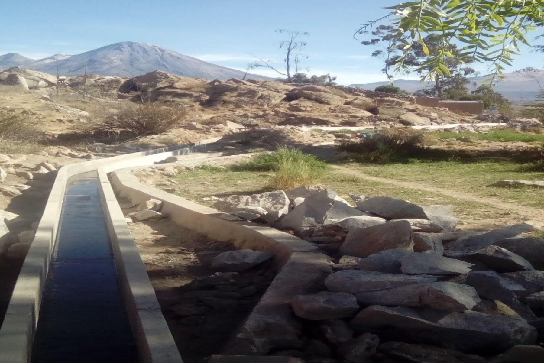 Ministerio de Agricultura impulsará proyectos para dinamizar actividad agrícola en Tacna. ANDINA/Difusión