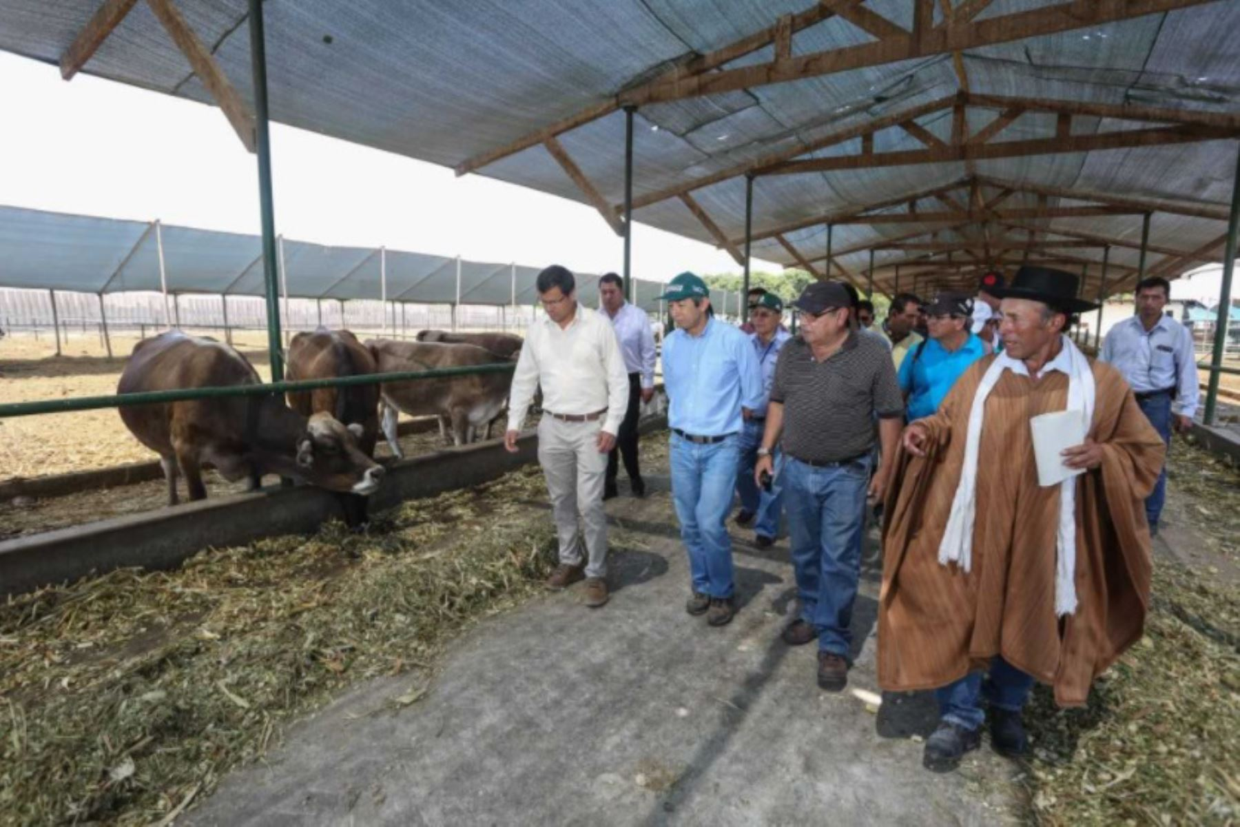 Para potenciar la ganadería lechera y la producción de carne, el ministro de Agricultura y Riego, José Arista, entregó hoy en Huaral pajillas de semen y embriones de ganado vacuno, genéticamente mejorados y de calidad, en favor de pequeños criadores de Ayacucho, Cajamarca, Puno, San Martín y Pasco.