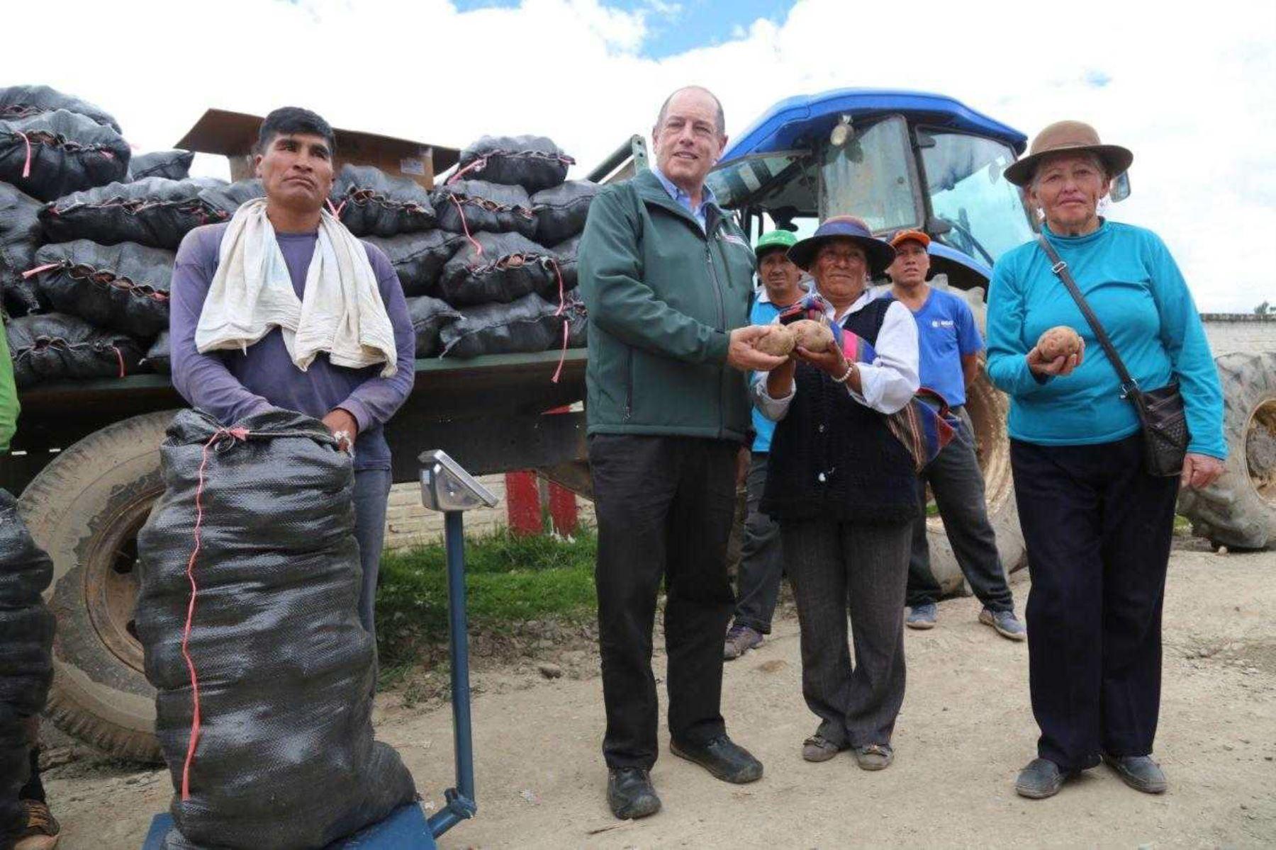 Como parte del proceso de adquisición de papa blanca, personal del Ministerio de Agricultura y Riego (Minagri) a través del programa Agro Rural, adquirió en la región Junín cerca de 500 toneladas del tubérculo andino en beneficio de los pequeños productores.
