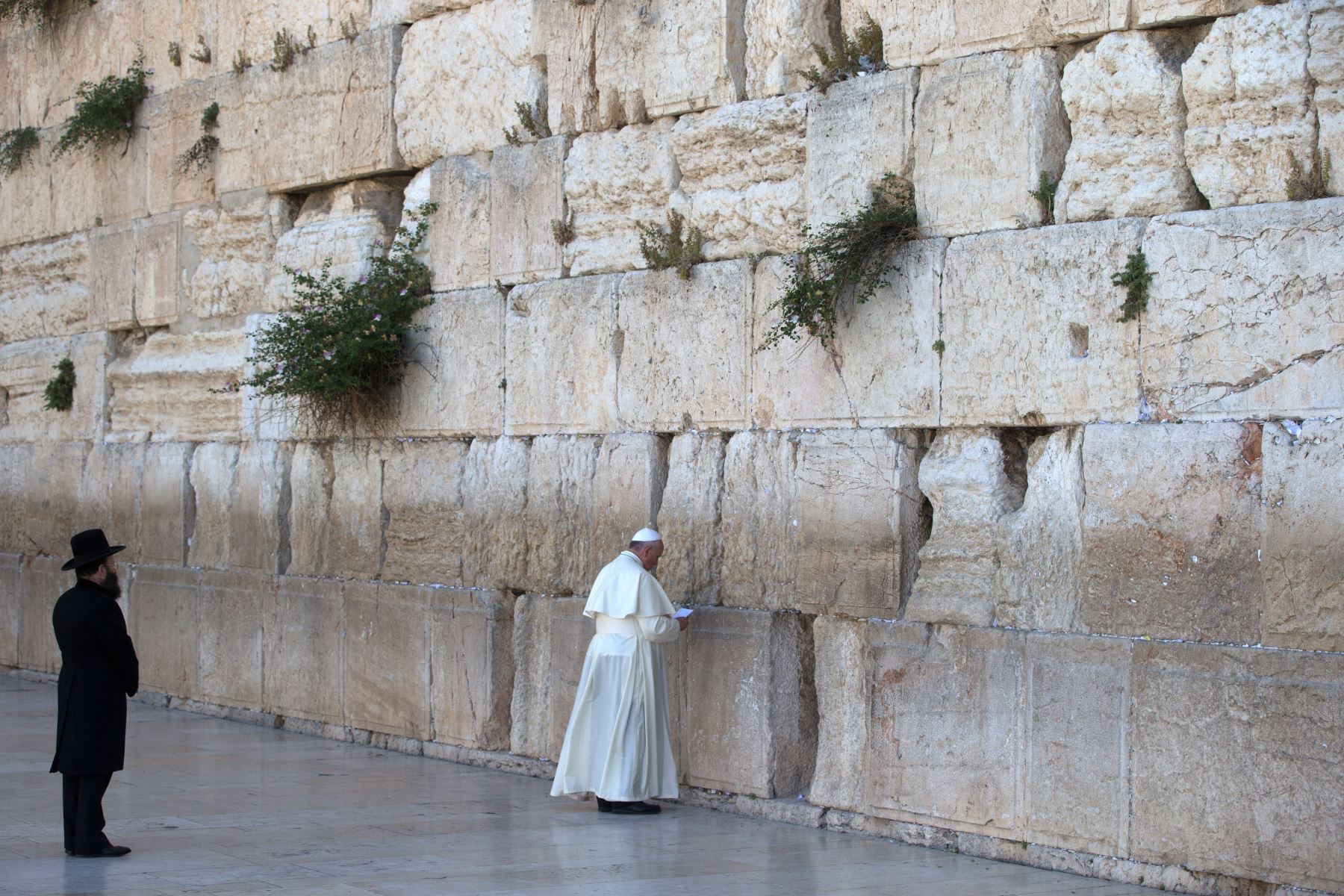 Papa Francisco reza ante el muro de los lamentos en Jerusalén. Foto: AFP