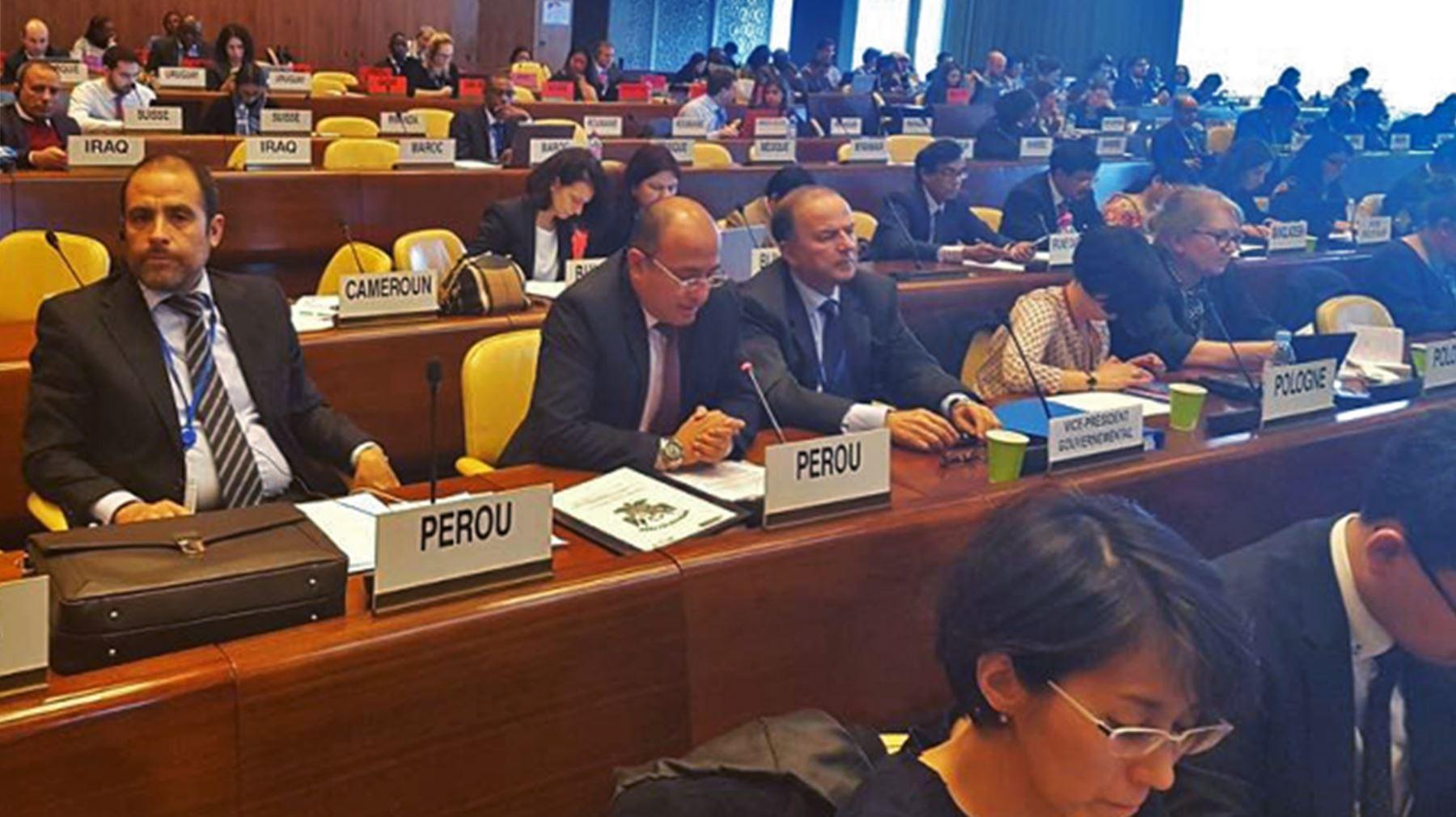 El viceministro Manuel Vásquez, en representación del Estado peruano, participa en la 332.ª Reunión del Consejo de Administración de la OIT, Cortesía.