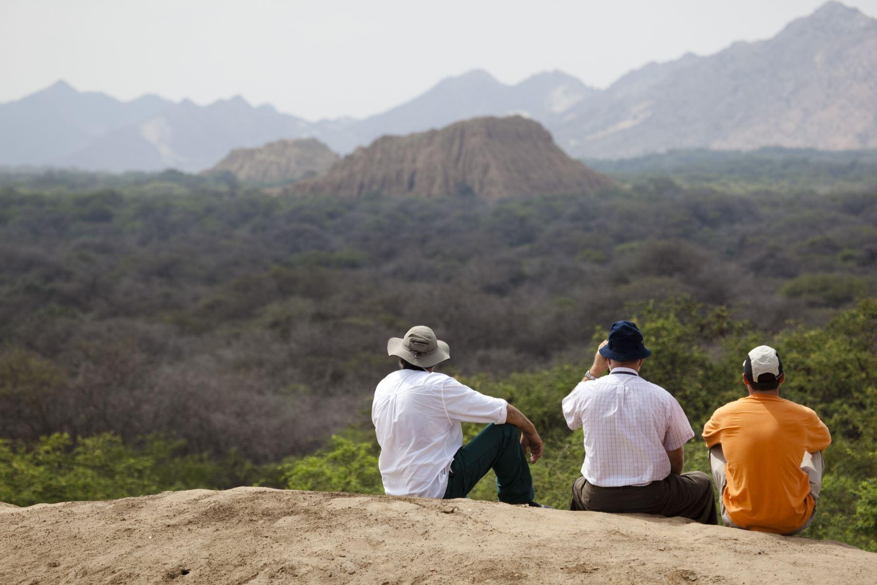 Santuario Histórico Bosque de Pómac forma parte del producto turístico: Bosques y Pirámides que oferta Lambayeque. ANDINA/Difusión