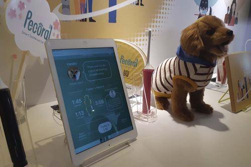 El cepillo inteligente para mascotas Pecoral protege la salud de los perros. La vibración puede ser modificada manualmente o utilizando un aplicativo móvil. Se podrá verificar el proceso de cuidado dental para una limpieza total. El prototipo continúa en desarrollo.
