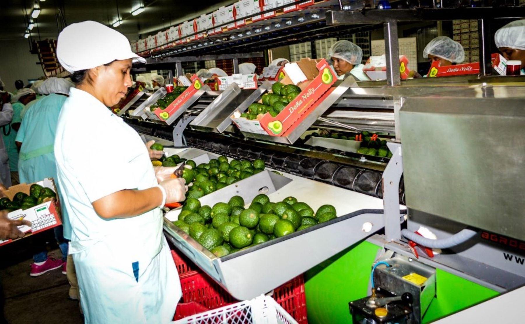 Exportaciones no tradicionales a nuevos mercados. ANDINA/Difusión