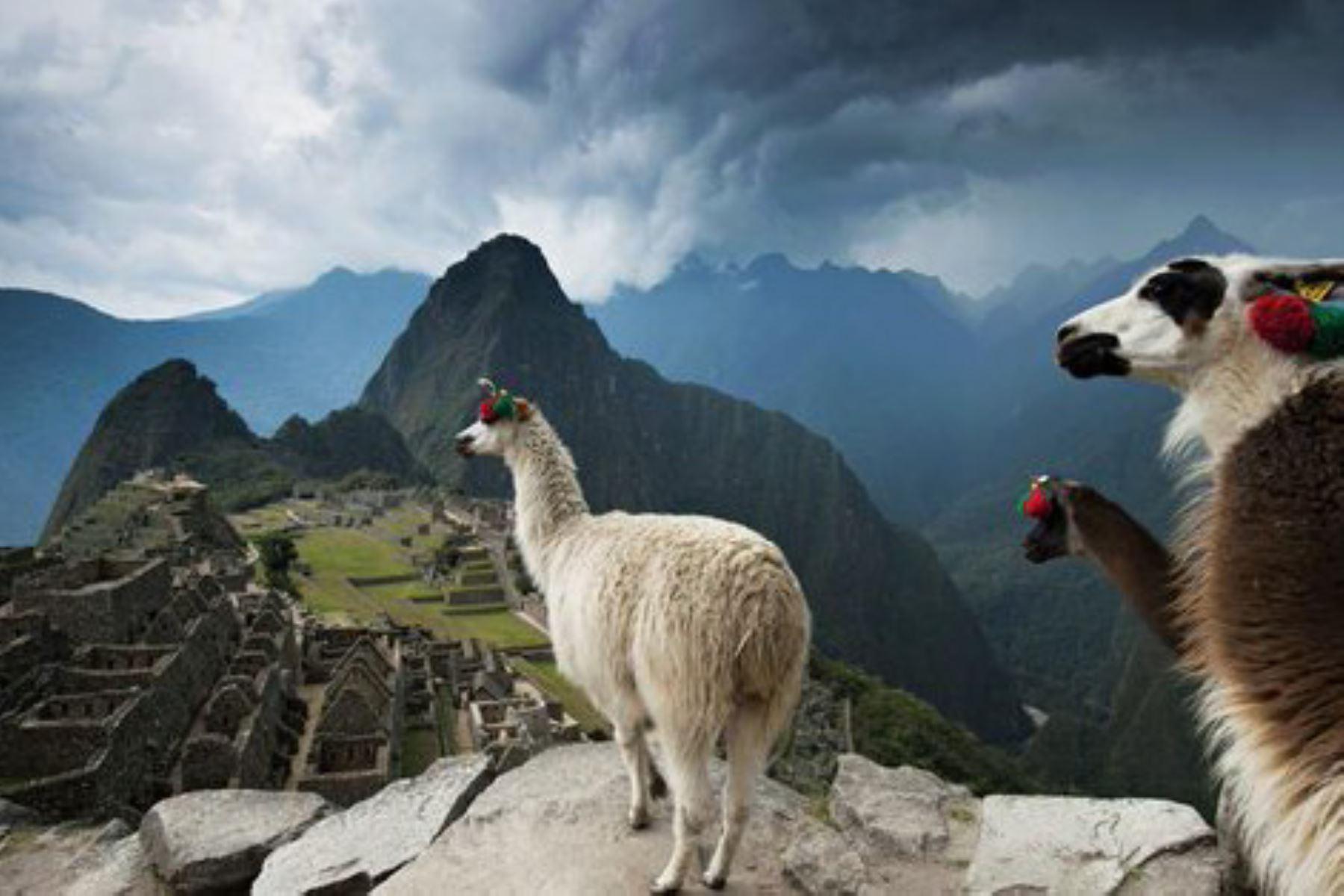 El encanto que irradia Machu Picchu en el mundo sigue cosechando elogios. Esta Vez, la prestigiosa publicación National Geographic vuelve a referirse a la ciudadela inca como una de las maravillas que invitan a viajar y que vale la pena conocer. Foto: Jim Richardson