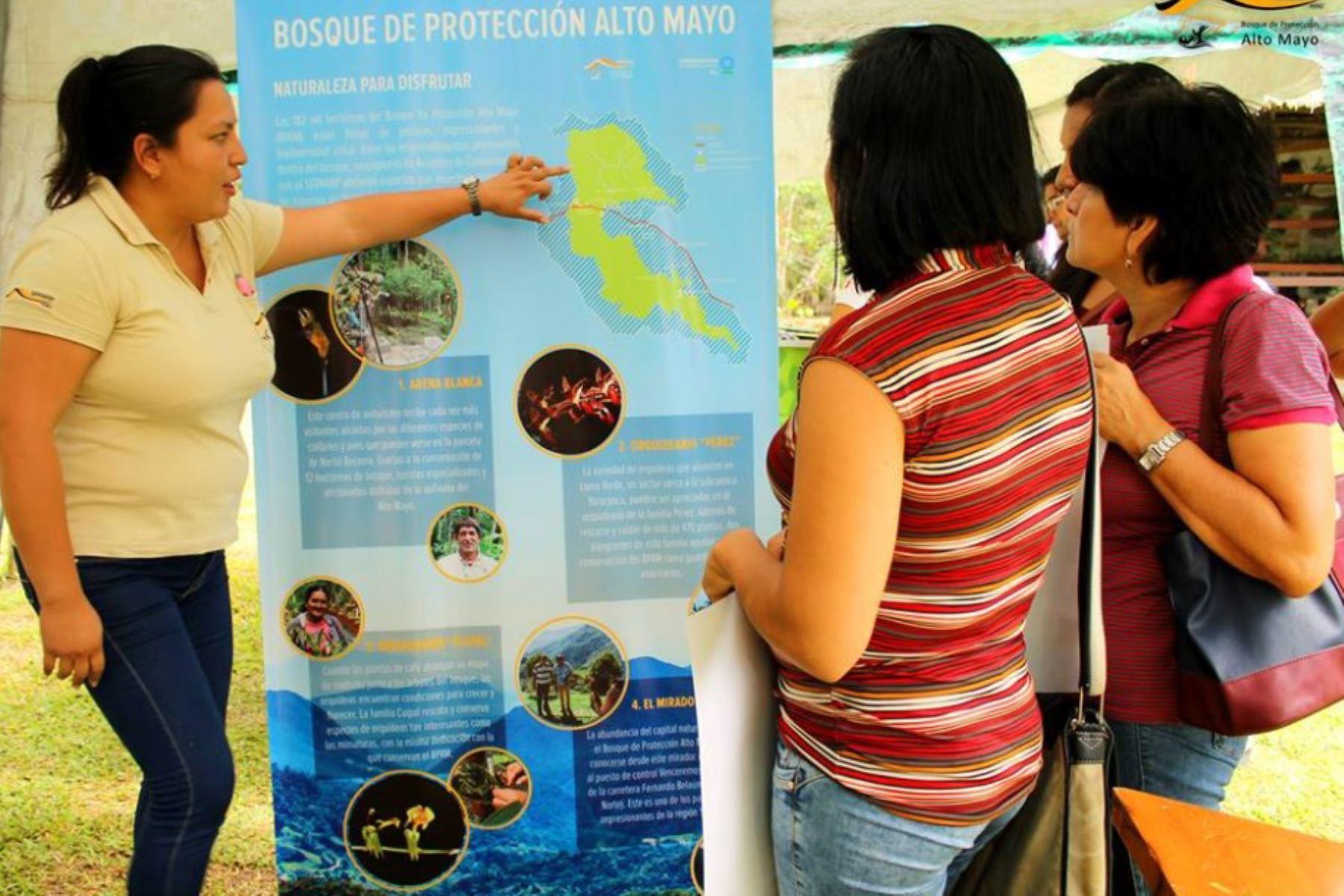 El Servicio Nacional de Áreas Naturales Protegidas por el Estado (Sernanp) lanzó hoy la convocatoria para la conformación de la tercera brigada de Hinchas de la Conservación del Bosque de Protección Alto Mayo, en la región San Martín.