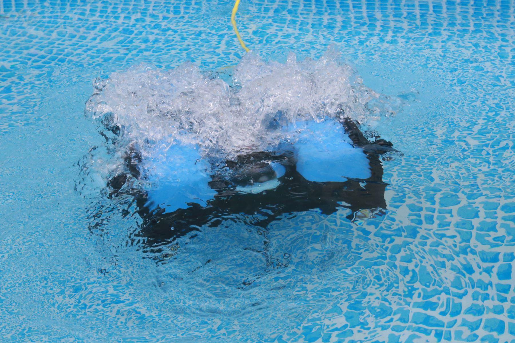 Este es uno de los tres robots submarinos que un equipo de ingenieros de la Universidad Católica del Perú (PUCP) ha creado para conocer fondos marinos.Foto: ANDINA/Jhony Laurente